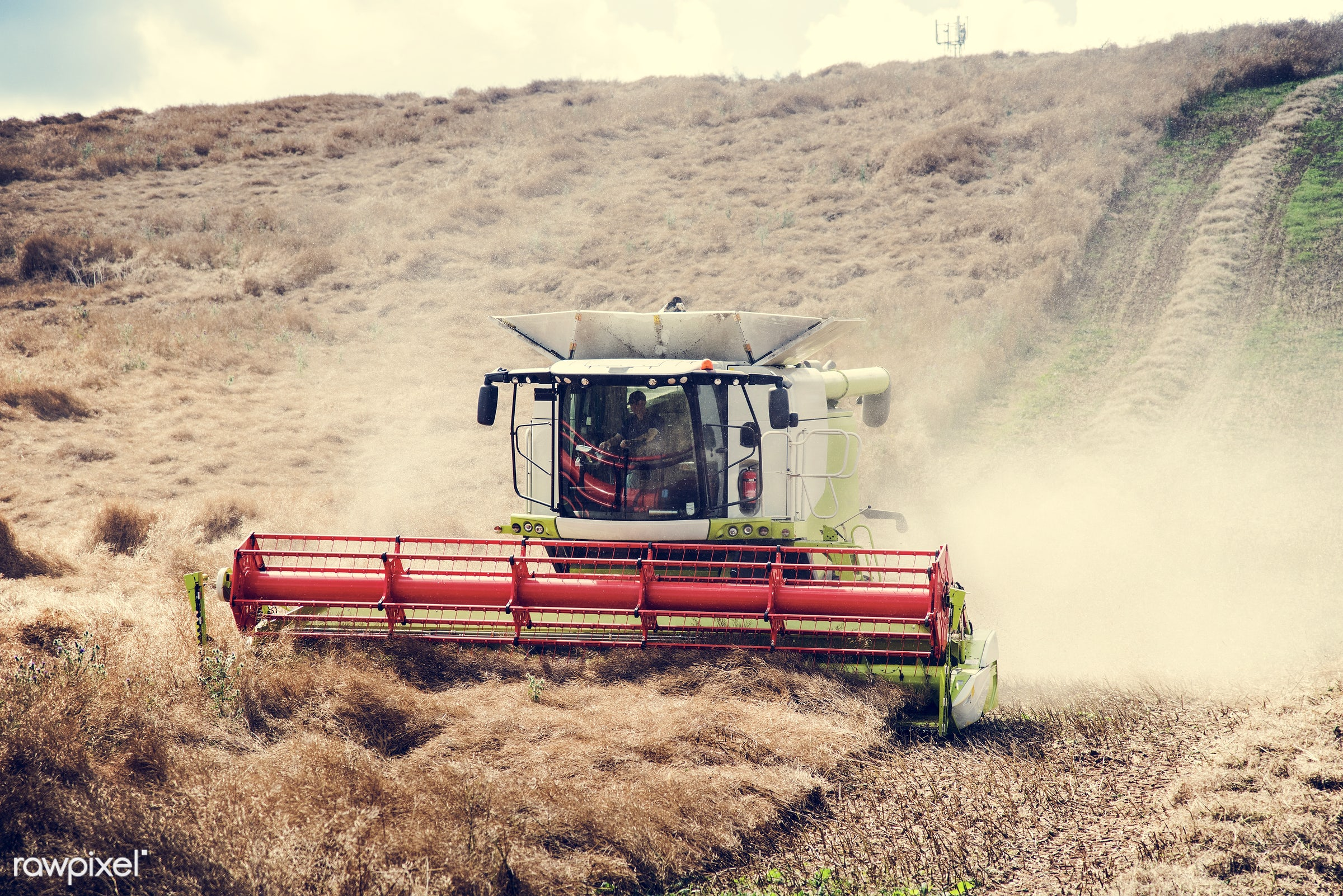agricultural, agriculture, crop, cutting, day, farm, field, harvesting, landscape, machinery, plants, prairie, Season,...