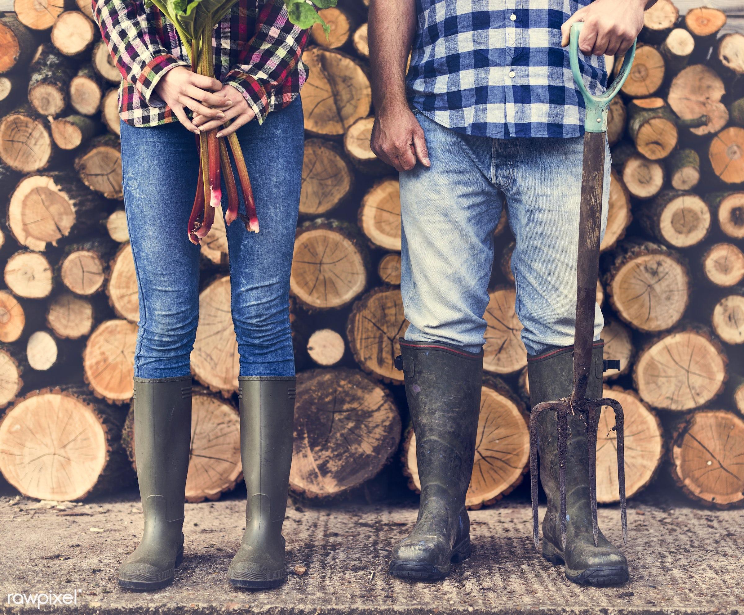 chopped, countryside, couple, cut, farmer, firewood, fuelwood, gardener, heap, log, lumber, lumberyard, nature, pile, piled...