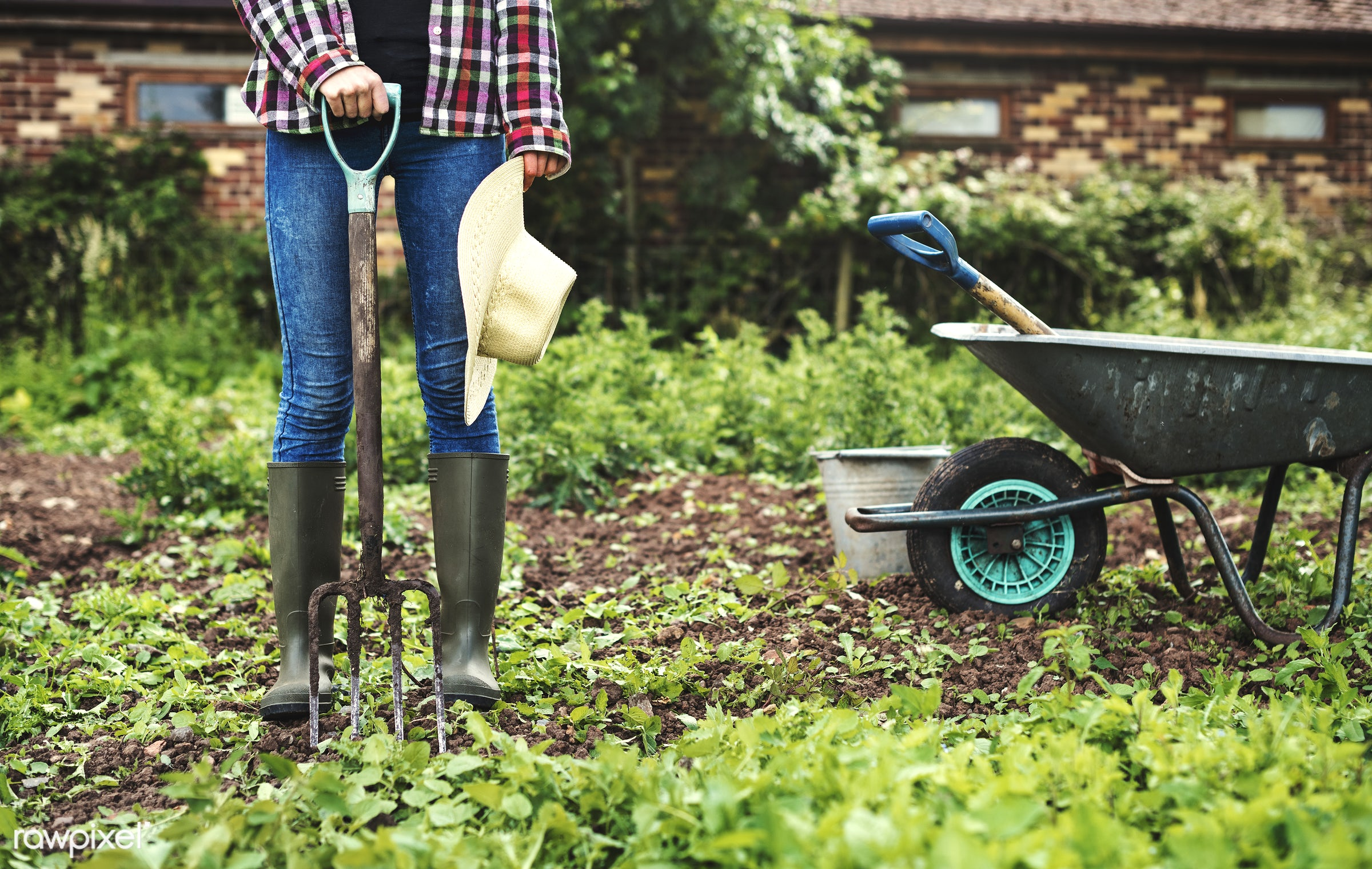 Vegetable farm - gardening, vegetable, boots, botanical, botany, country, countryside, cultivate, cultivating, farm, fresh,...