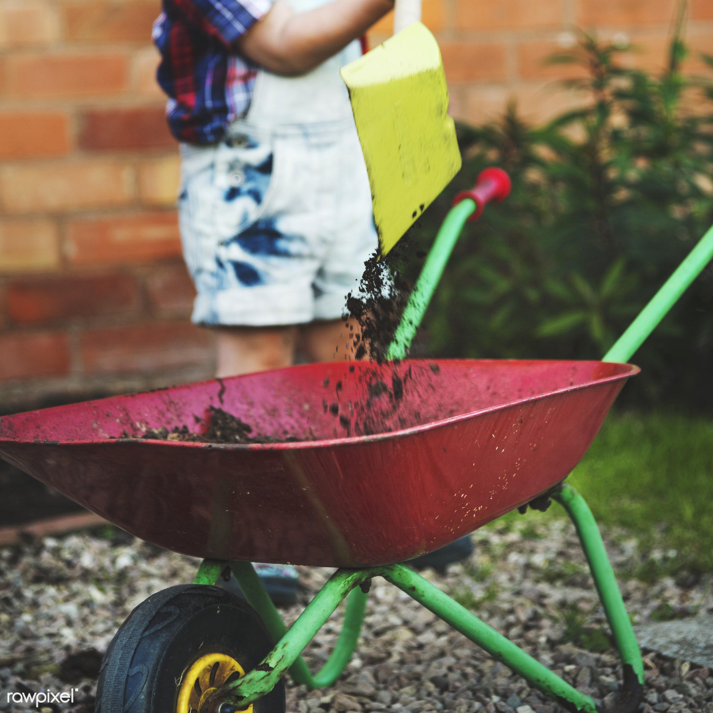 Kid in the garden - activity, alone, boy, caucasian, child, childhood, children, development, garden, hobby, kid, leisure,...