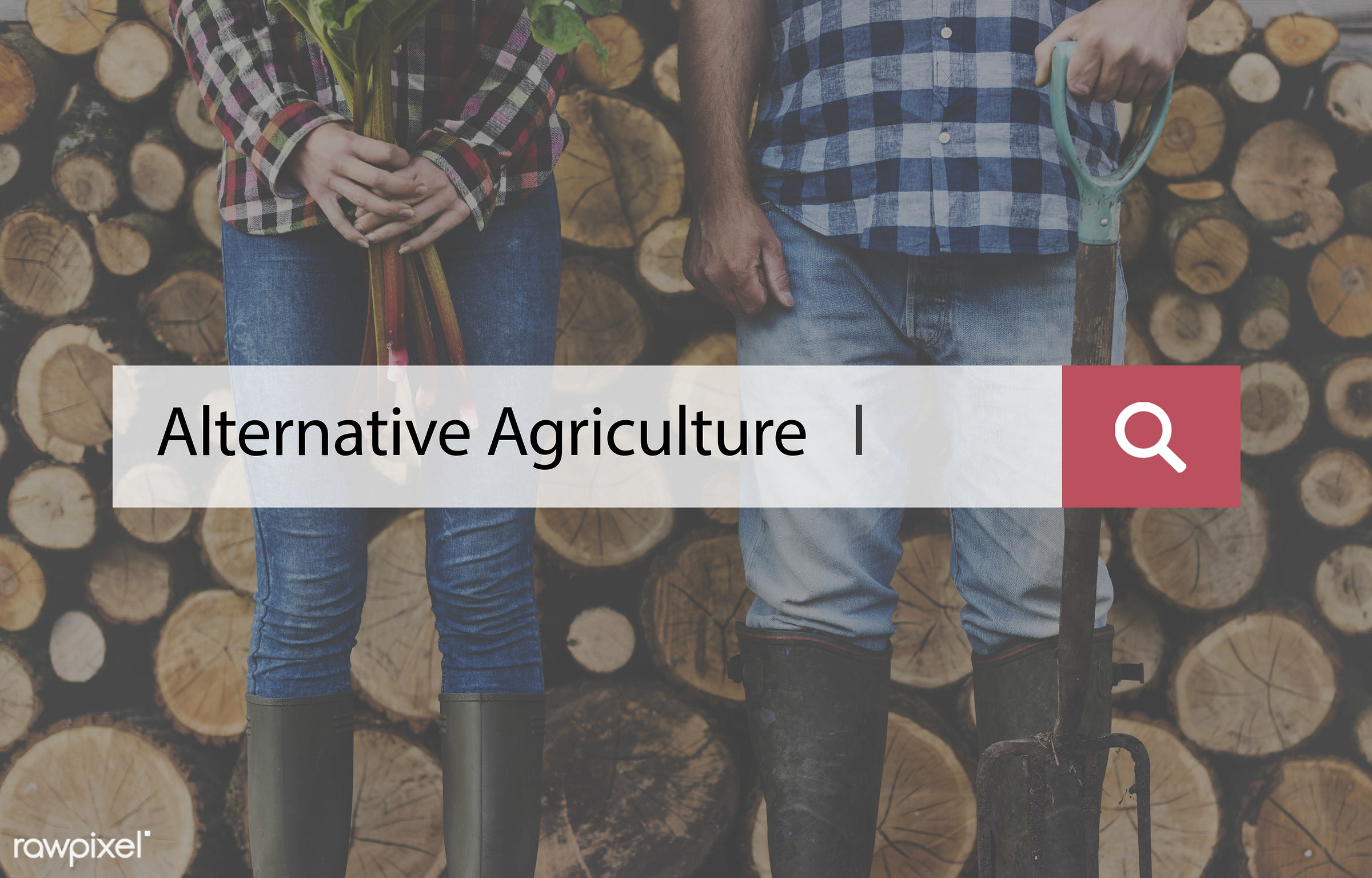 caucasian, farm, farmer, firewood, hands, holding, jeans, legs, log, lumber, men, natural, plant, shovel, stack, stand,...