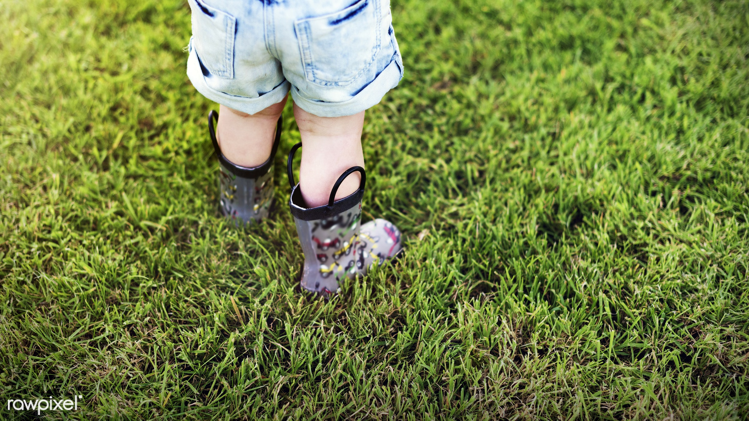 lawn, arboretum, backyard, bloom, blooming, botanical, botany, boy, child, country, countryside, cultivate, cultivating,...