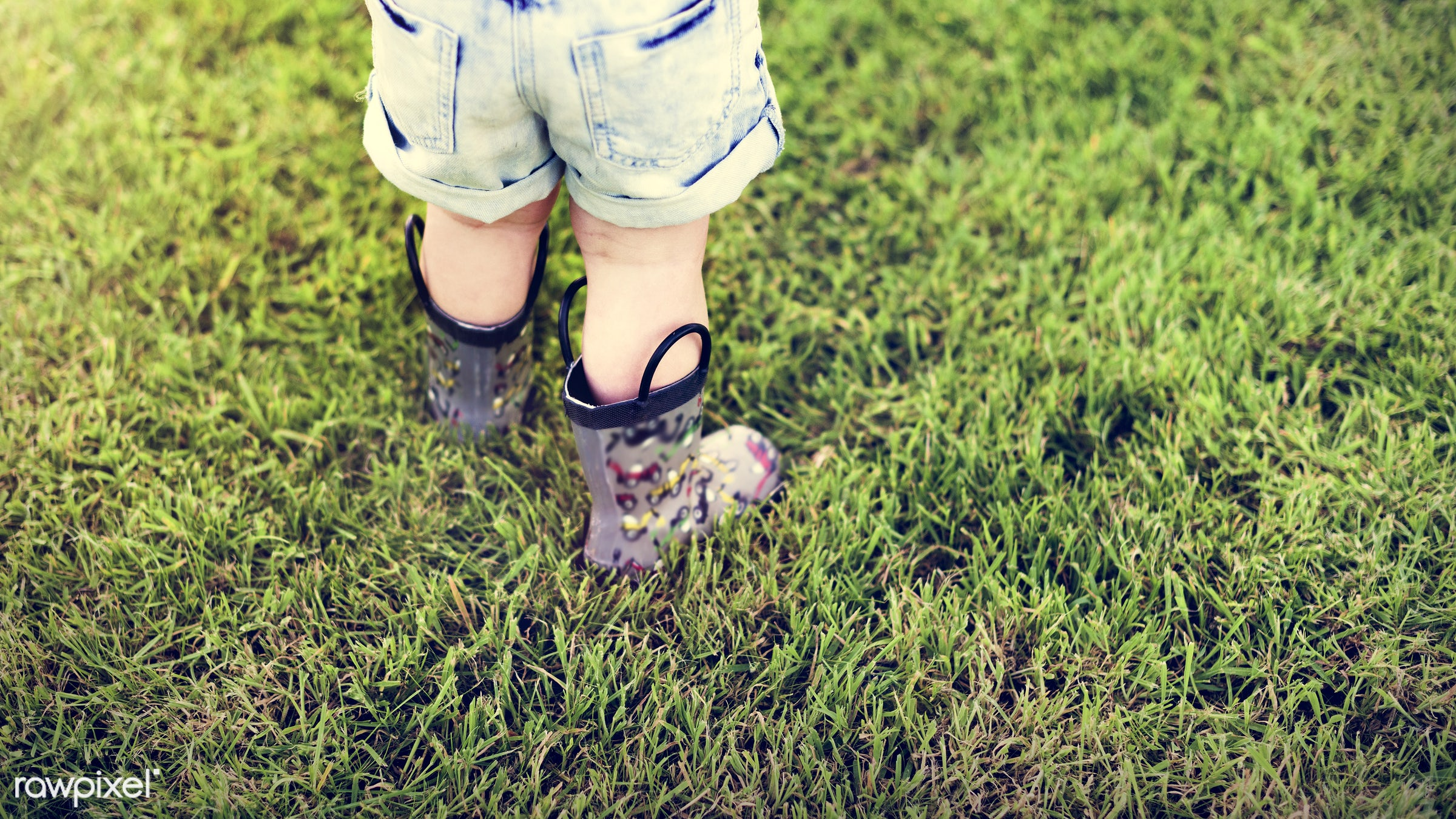 arboretum, backyard, bloom, blooming, botanical, botany, boy, child, country, countryside, cultivate, cultivating, flora,...