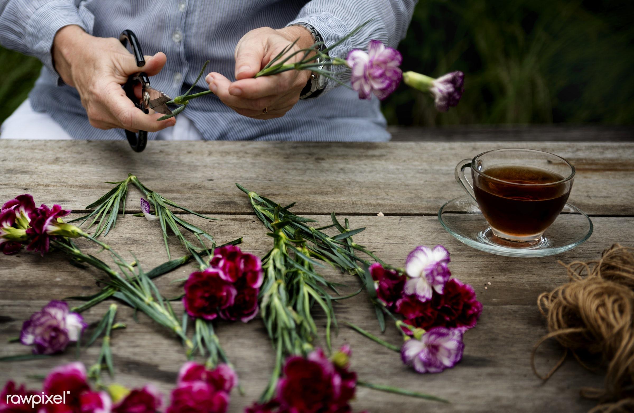 Florist hands trimming flower leaves  - green thumb, leaves, trimming, scissors, coffee, table, flowers, plants, hobbies,...
