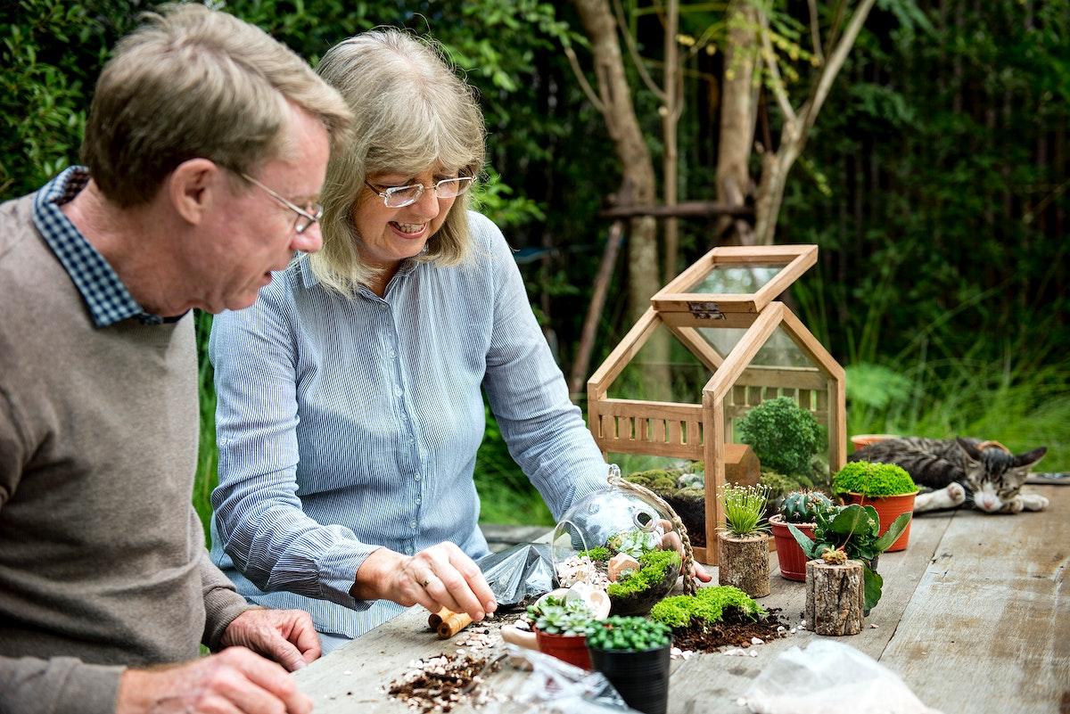 Elderly senior couple gardening together