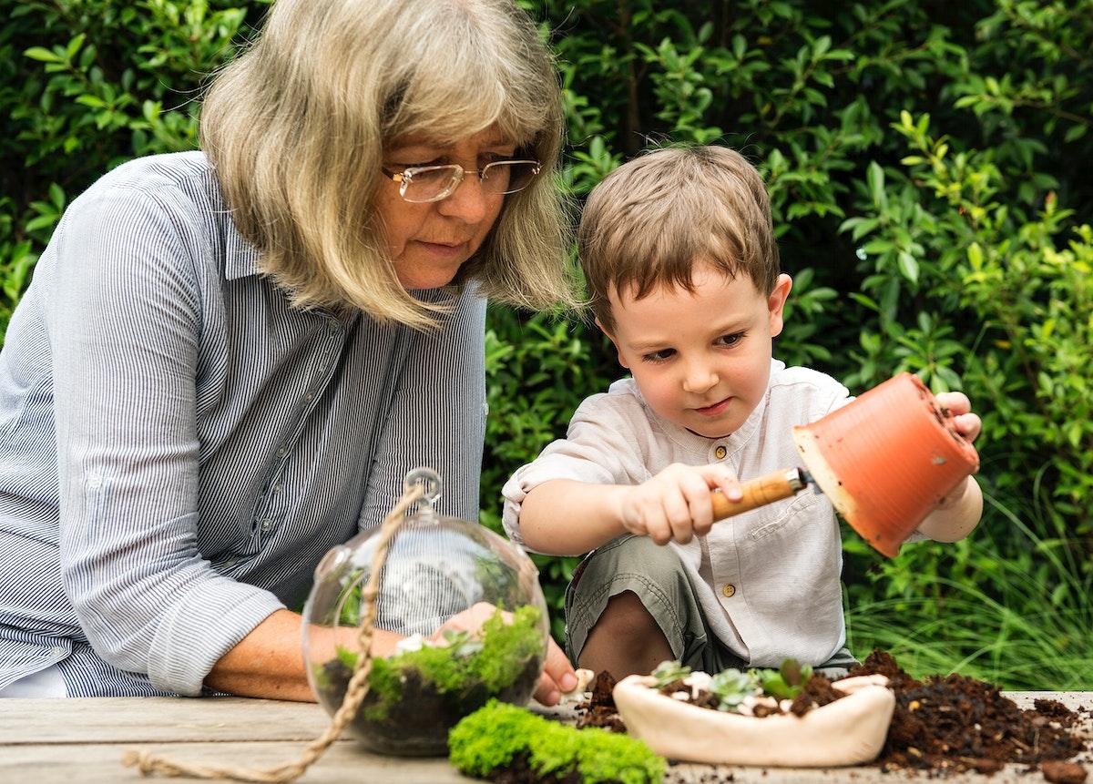 Grandmother gardening with grandson