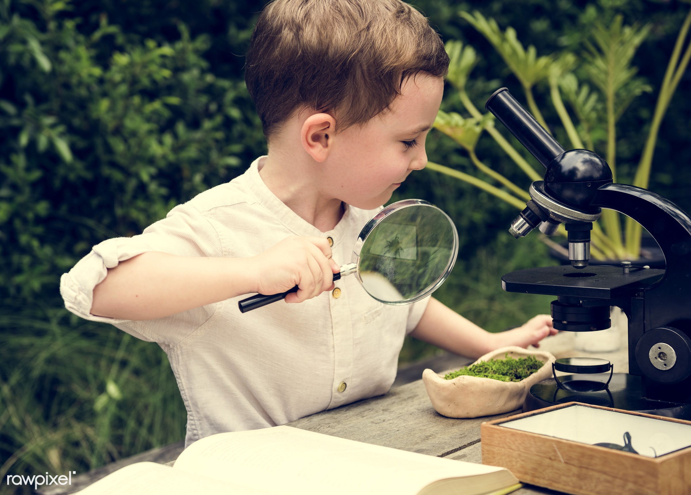 plant, positivity, science, microscope, kid, child, life, micro, lifestyle, experiment, pottery, smile, positive, grandson,...