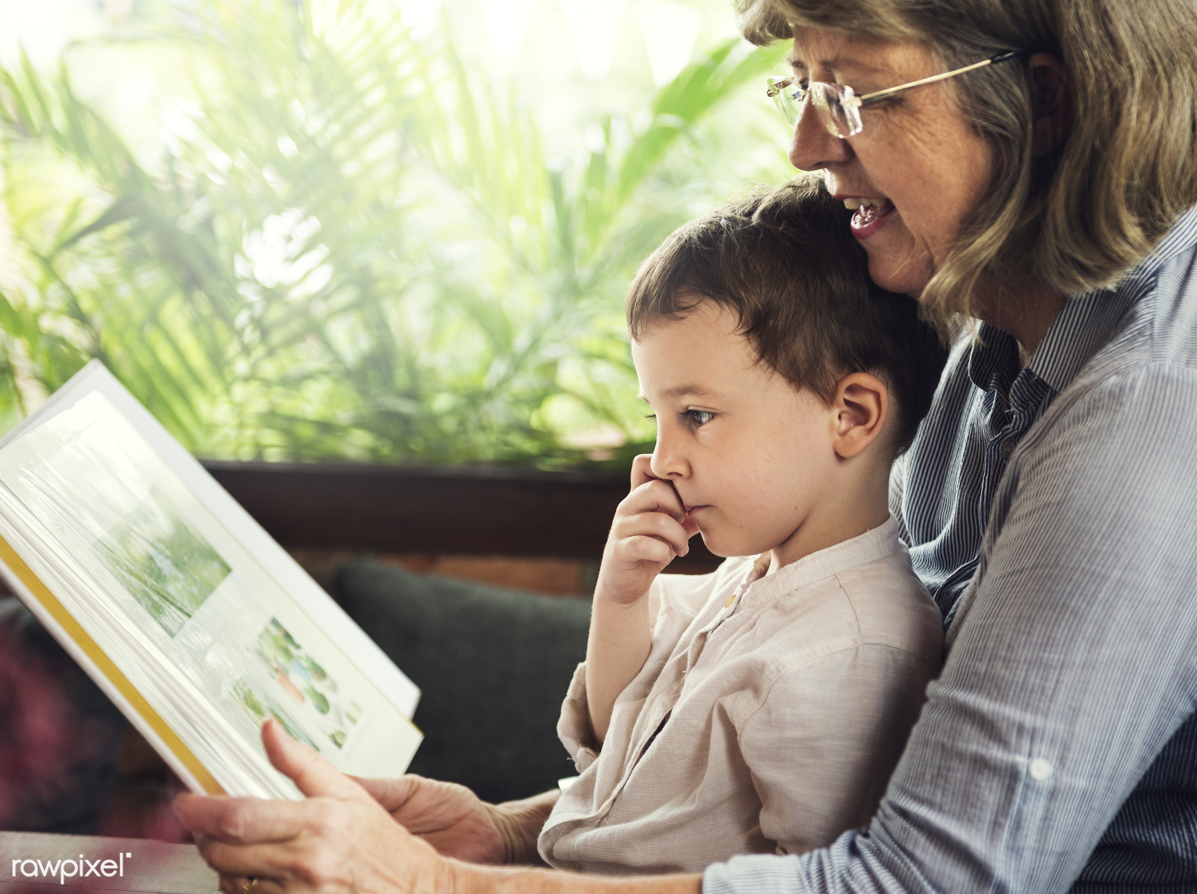 Grandmother and grandson reading a book together - grandson, home, grandmother, family, boy, young, kid, child, caucasian,...