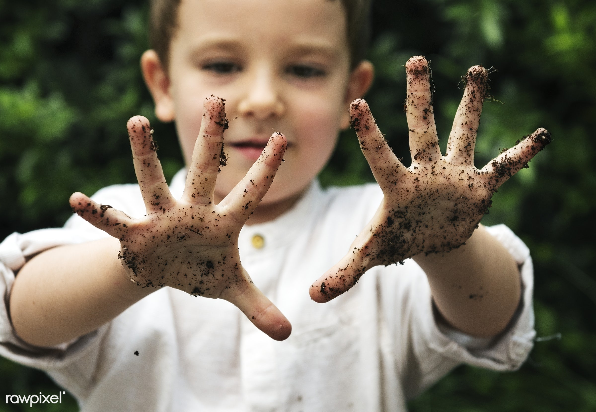 Young boy with dirty hands - kid, young, boy, child, dirty, hands, caucasian, dirt, soil, palms, outdoors, activity, people
