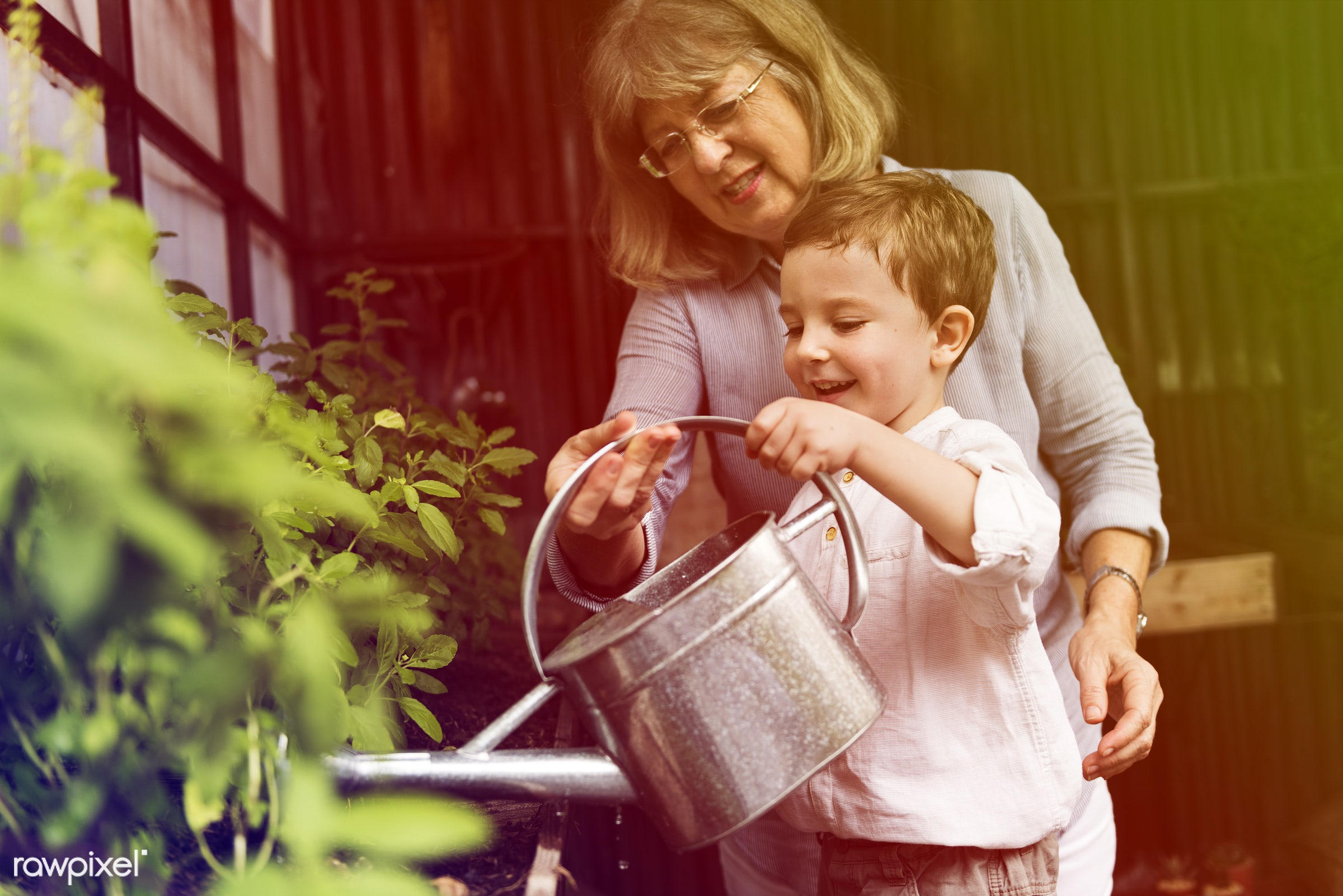 watering, recreation, people, together, kid, nature, woman, interest, childhood, grandson, grandma, generation, hobby,...