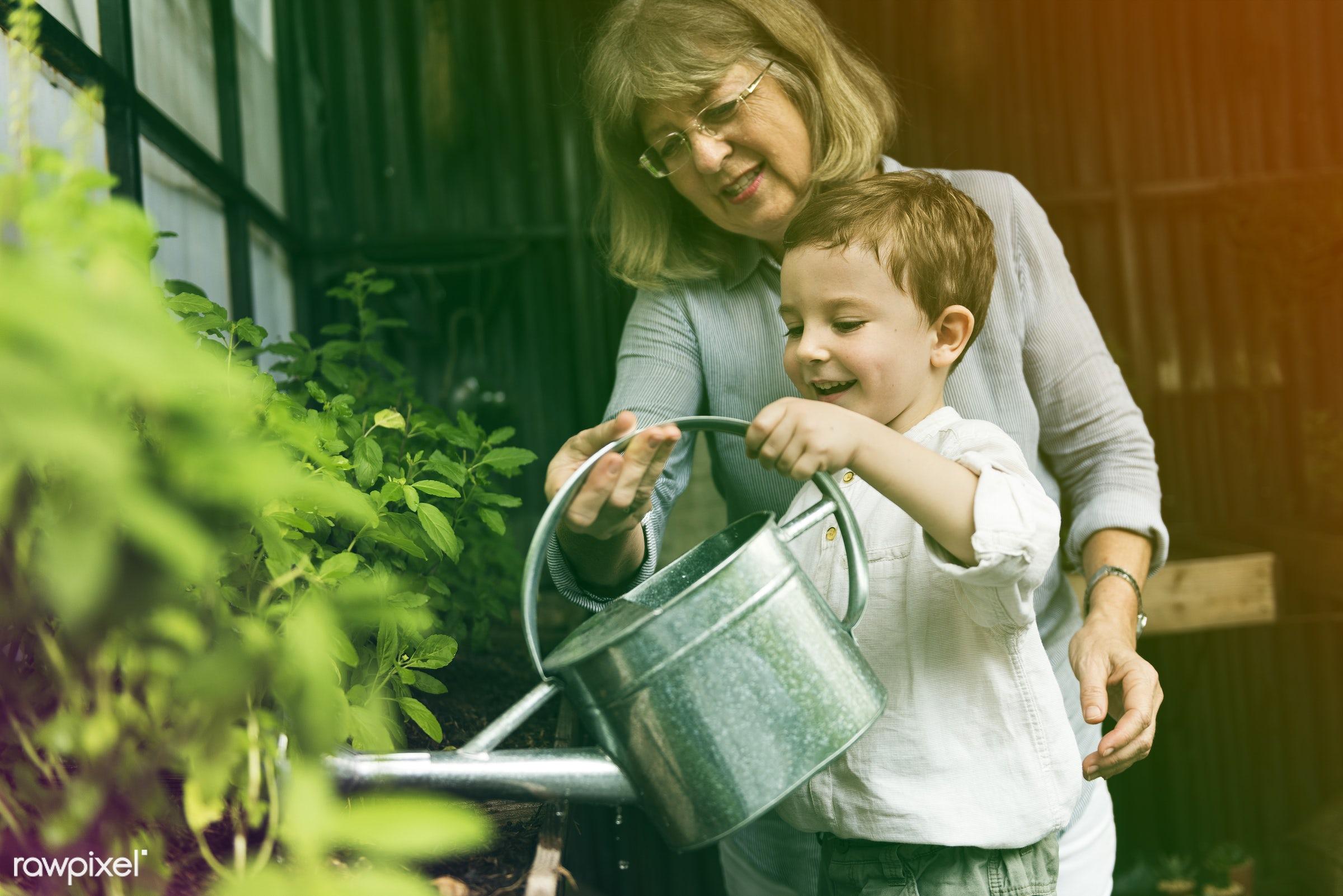 watering, recreation, people, together, kid, nature, woman, interest, childhood, grandson, grandma, generation, hobby,...