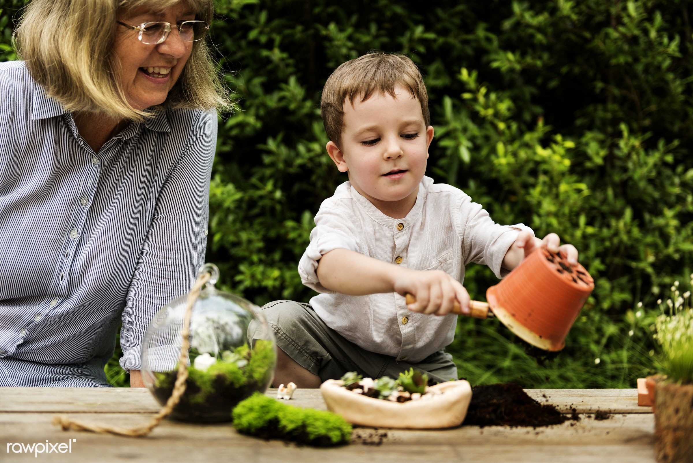 plant, succulent, decorative, handicraft, tropical, moss, terrarium, botanical, miniature, kid, decor, nature, woman,...