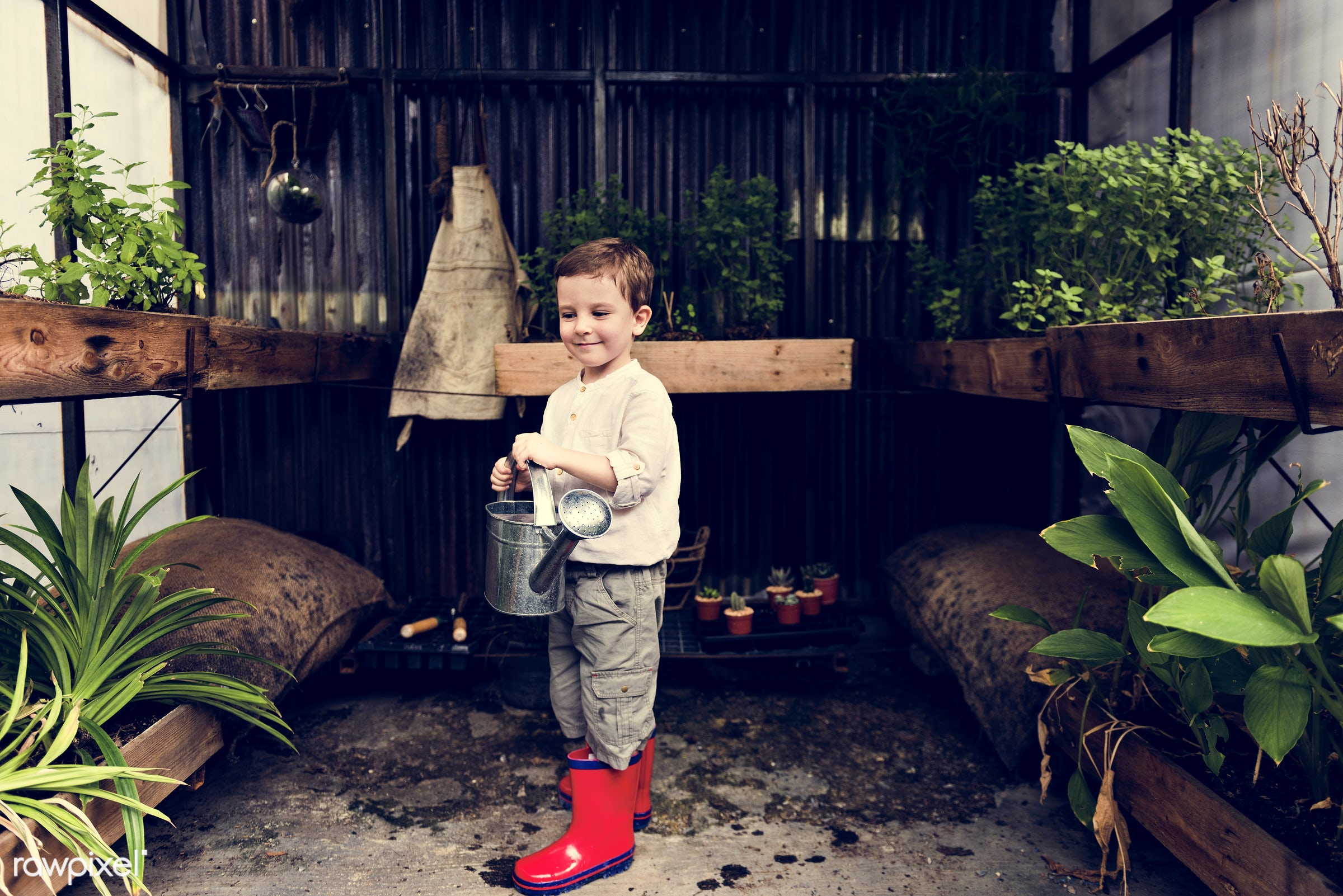 watering, plant, children, recreation, people, kid, child, nature, interest, ecology, freetime, childhood, passion,...