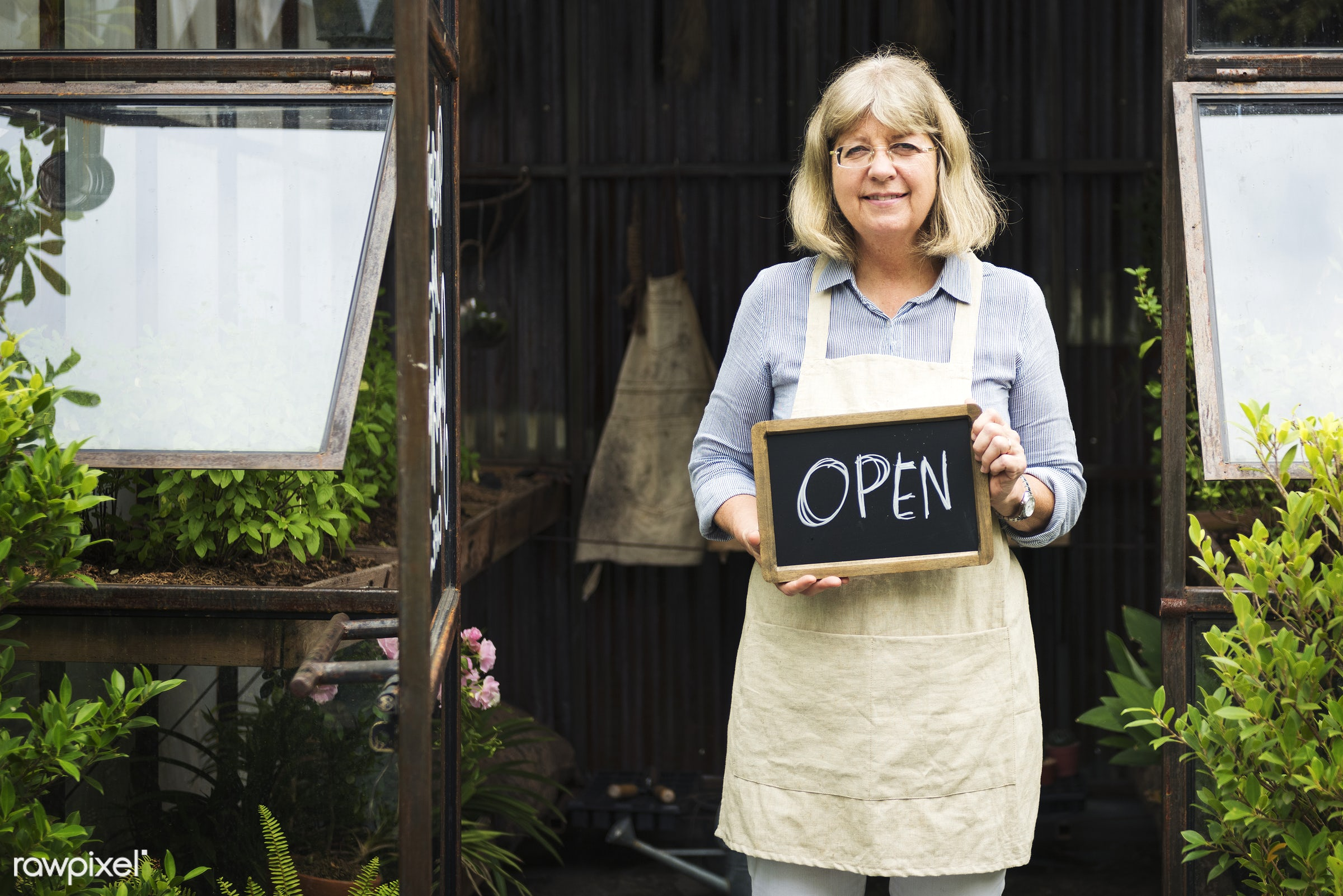 Old caucasian woman with open sign - business, elderly, garden, greenhouse, holding, lady, old, open, people, plants, senior...