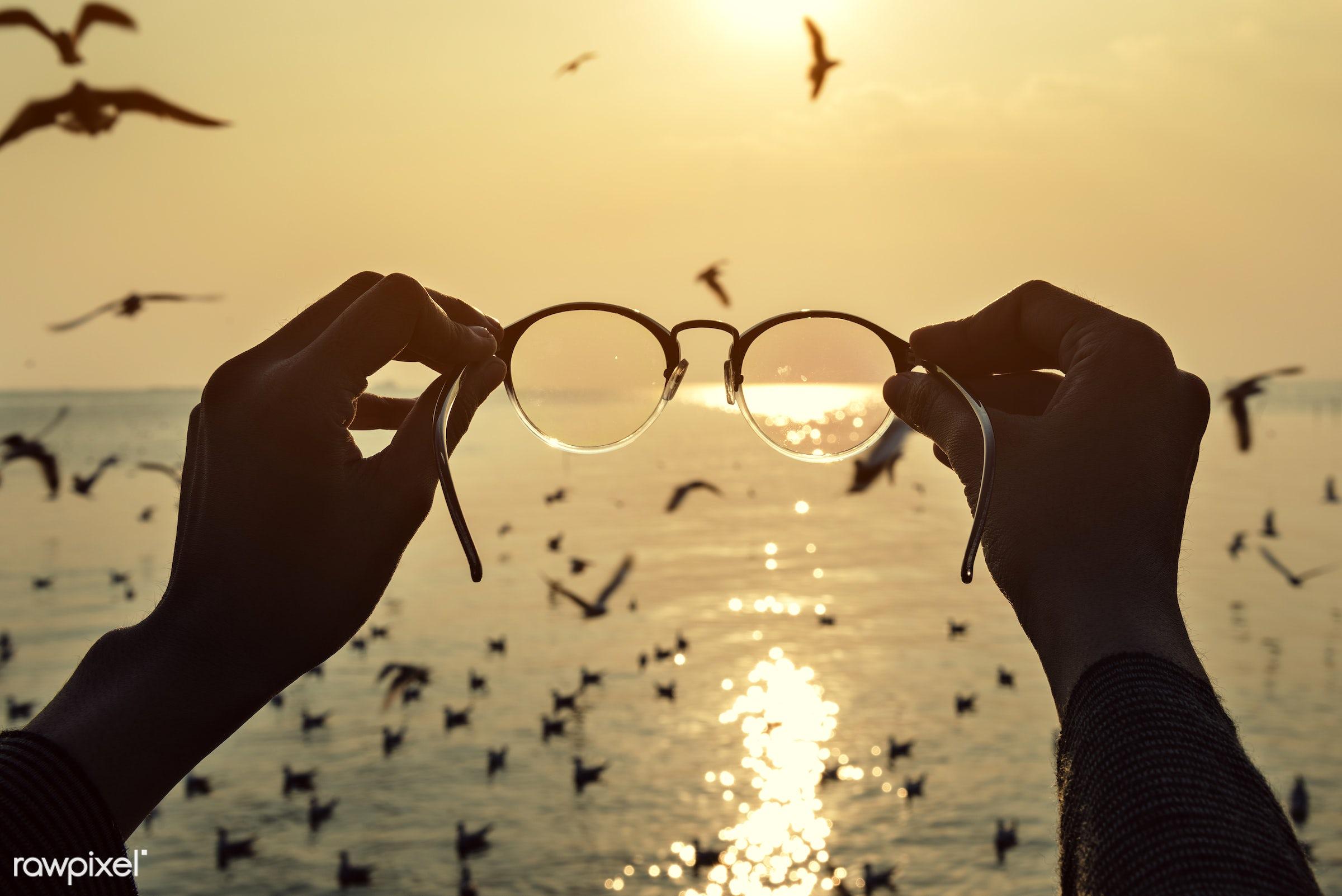 sunset, bird, flying, sky, nature, outdoors, eyeglasses, hands, holding, glasses, animal, water, ocean, sea, fligth,...