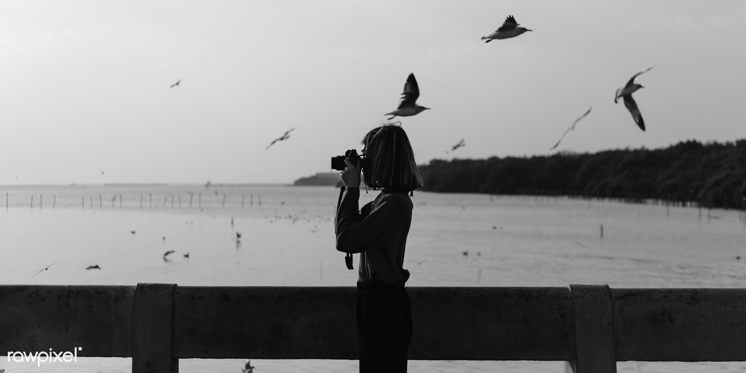 Girl using her camera outdoors - girl, woman, camera, photography, photographer, hobby, photo, picture, outdoors, nature,...