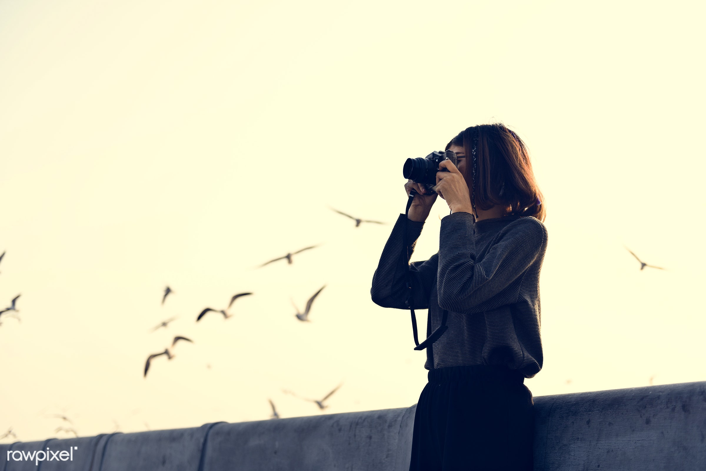 girl, woman, camera, photography, photographer, hobby, photo, picture, outdoors, sky, alone, bird, animal, leisure,...