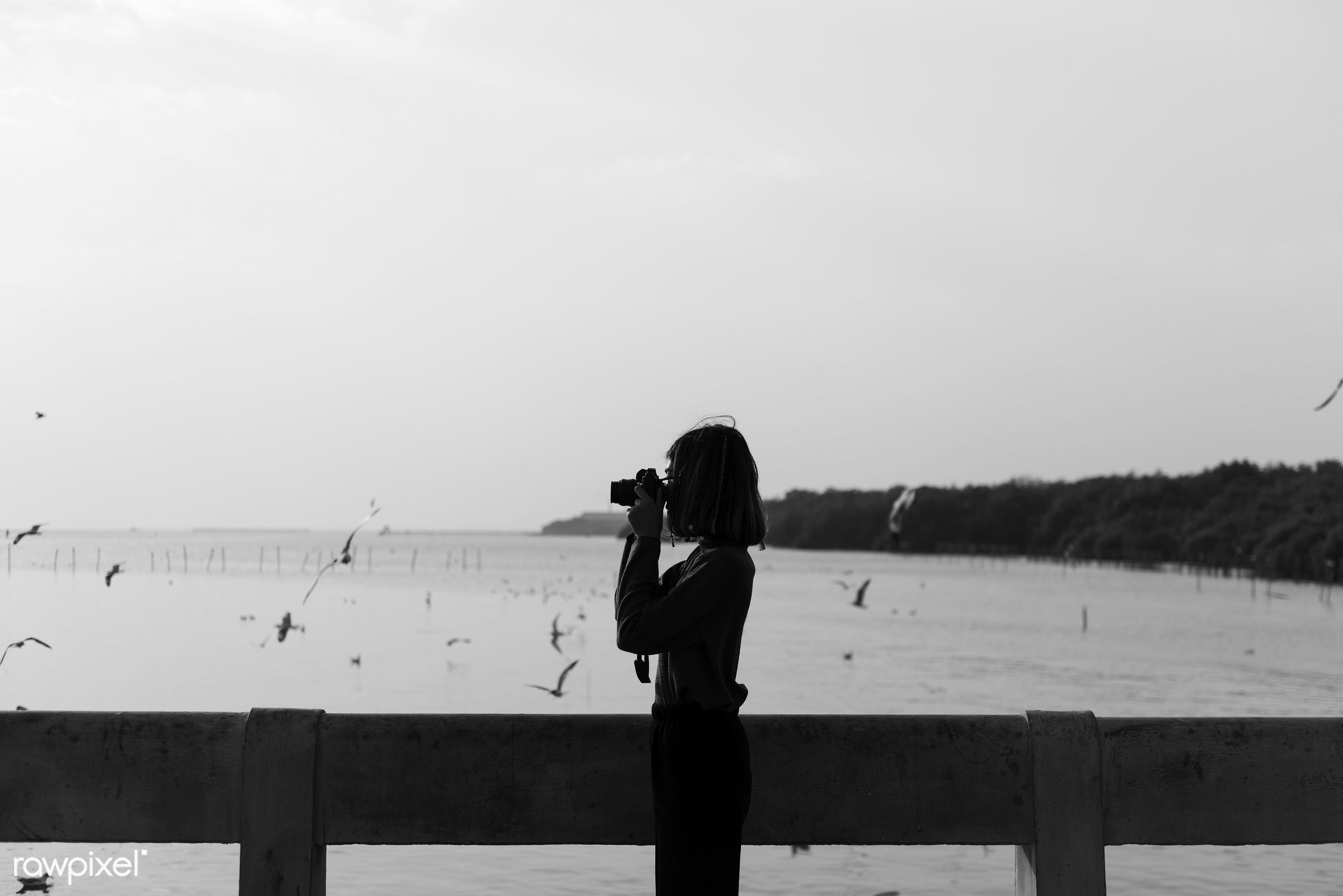 nature, photography, photographer, alone, camera, girl, hobby, ocean, outdoors, person, photo, picture, sea, silhouette, sky...