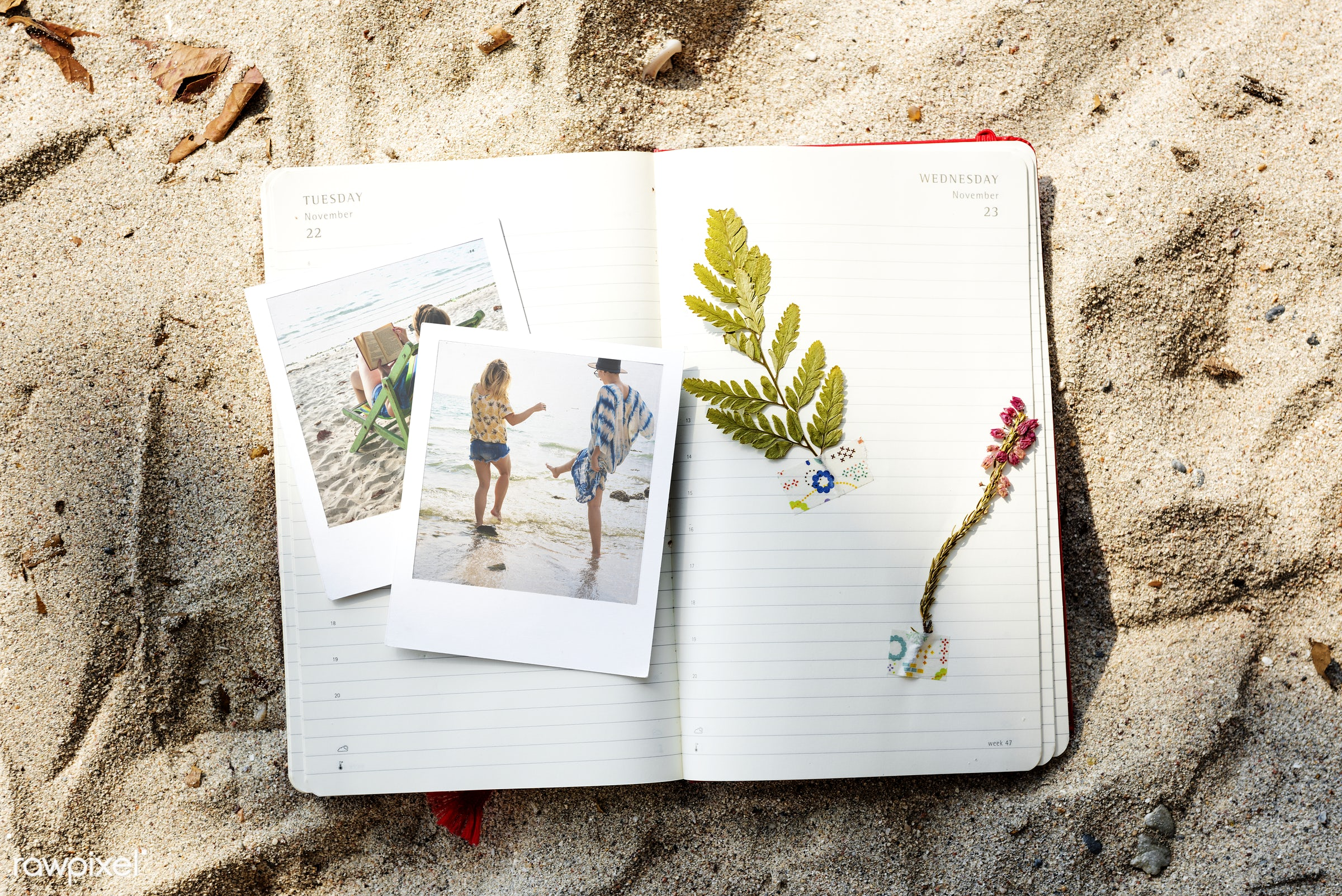 craft, diary, freedom, joy, holidays, pictures, ocean, travel, carefree, beach, recreation, leaves, photography, coast,...