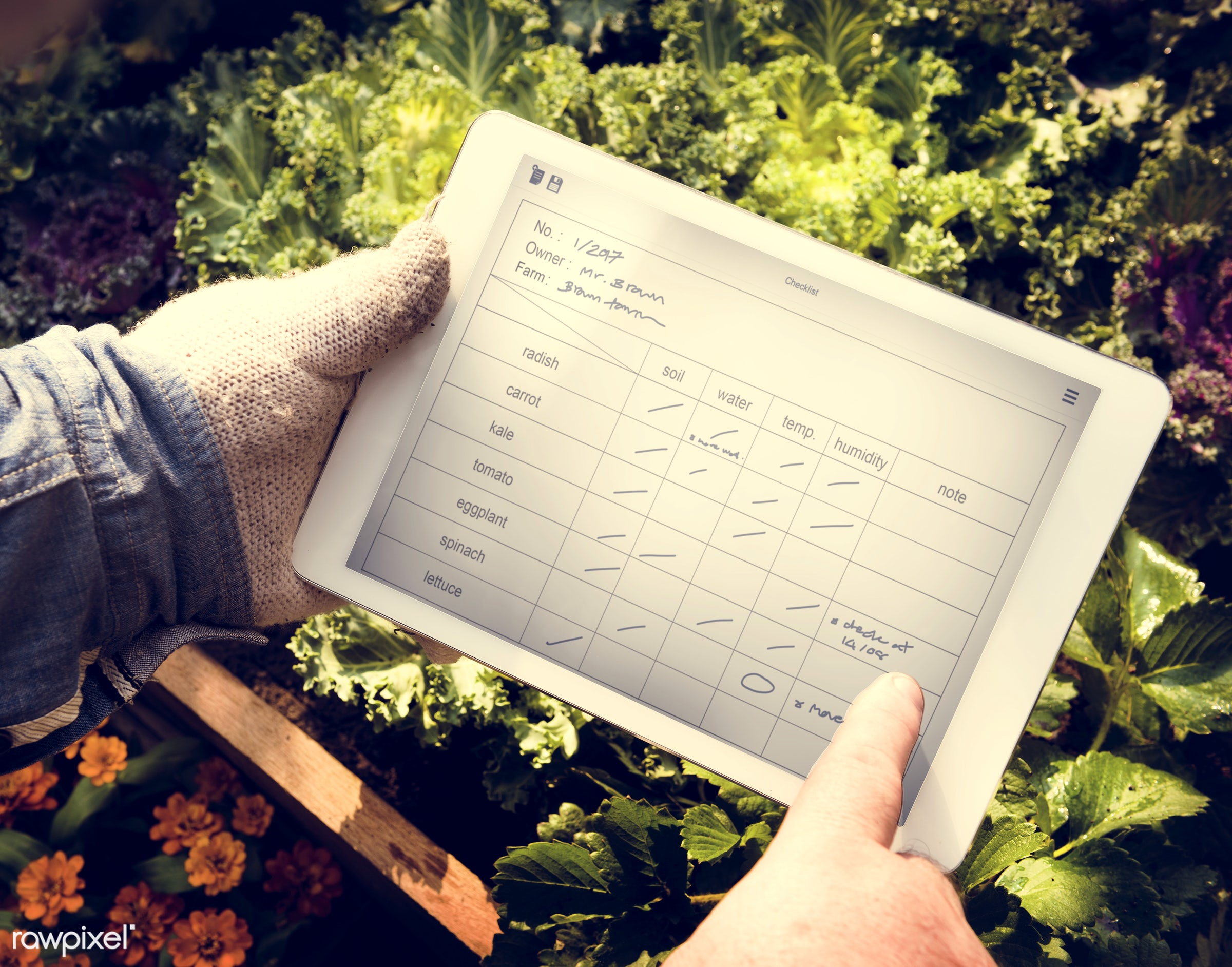 salad, person, technology, holding, leaves, people, farmer, dirt, flowers, control, agriculture, planting, present, system,...