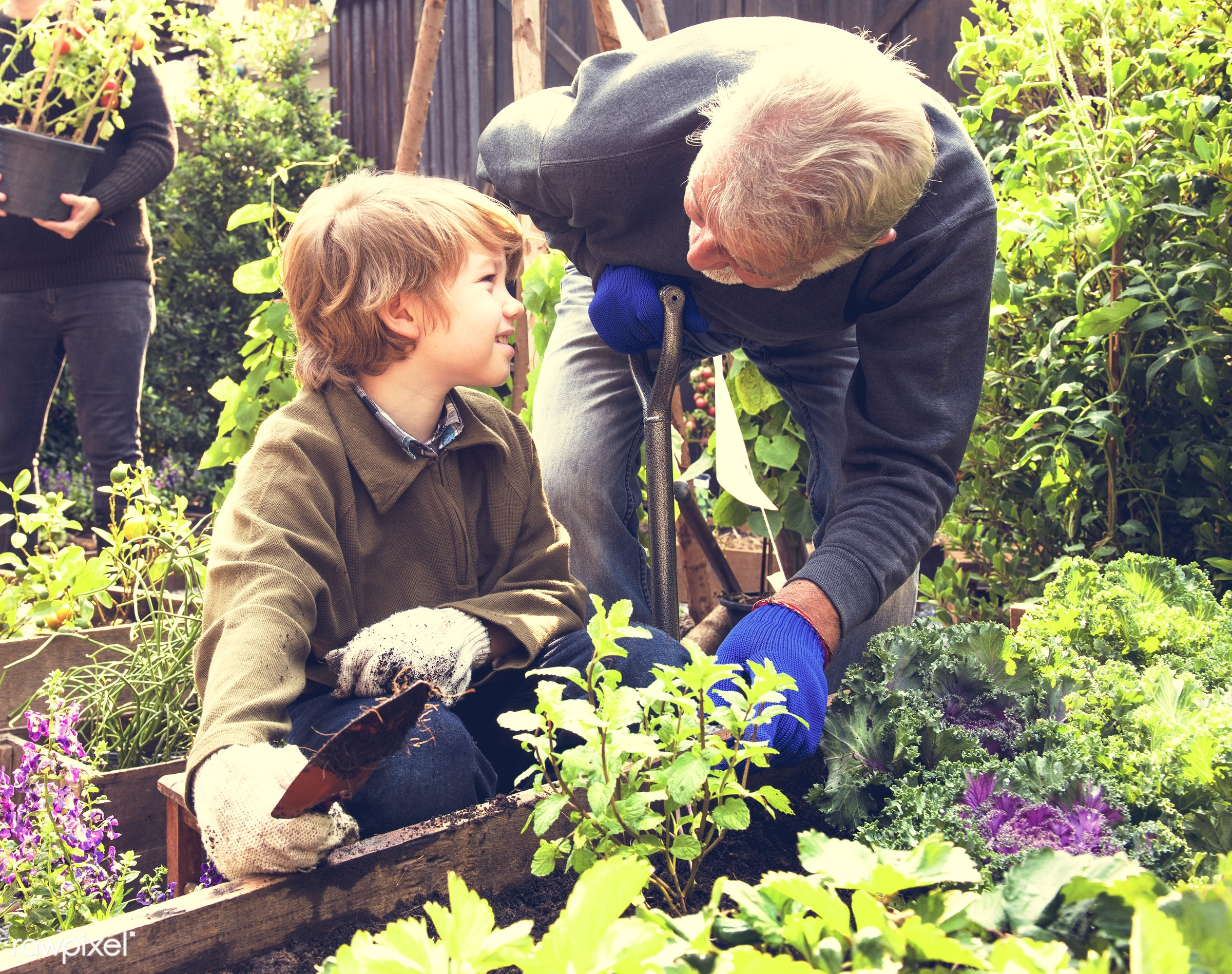 countryside, person, greenhouse, botanical, plantation, caucasian, kid, tree, nature, family, lifestyle, backyard, working,...