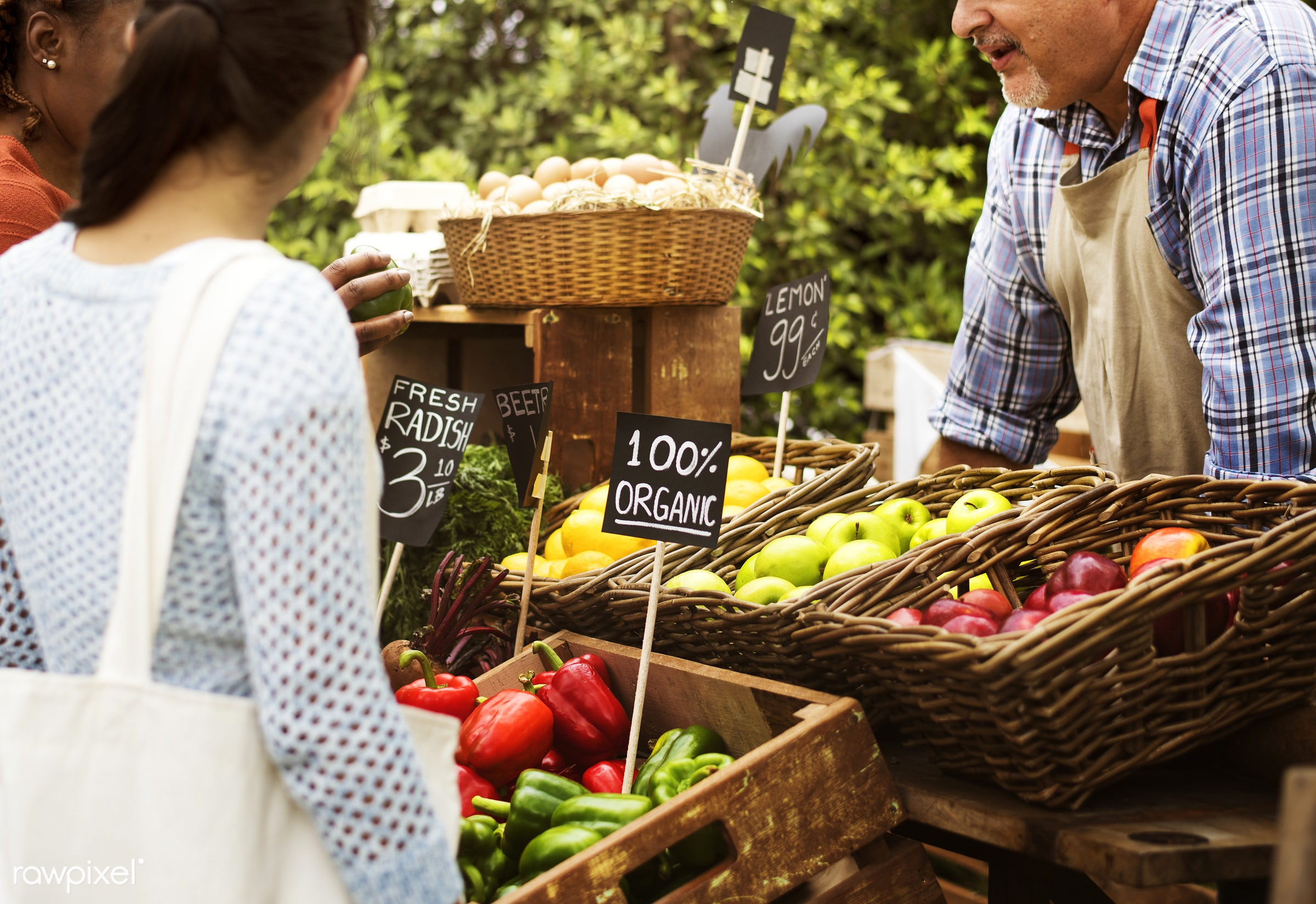 shop, person, stall, consumer, egg, people, farmer, choosing, choose, display, tomatoes, sign, nutrition, price, market,...