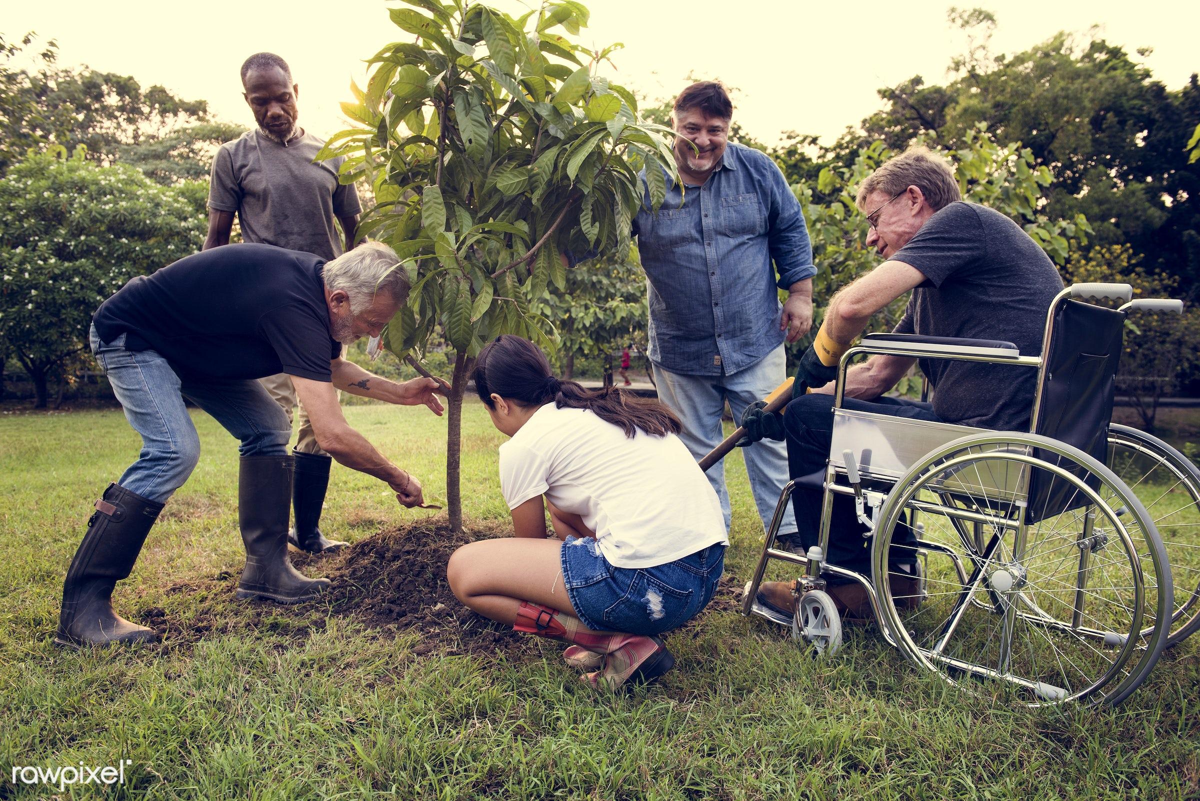 countryside, diverse, greenhouse, neighbor, botanical, people, plantation, cripple, friends, tree, nature, woman, lifestyle...