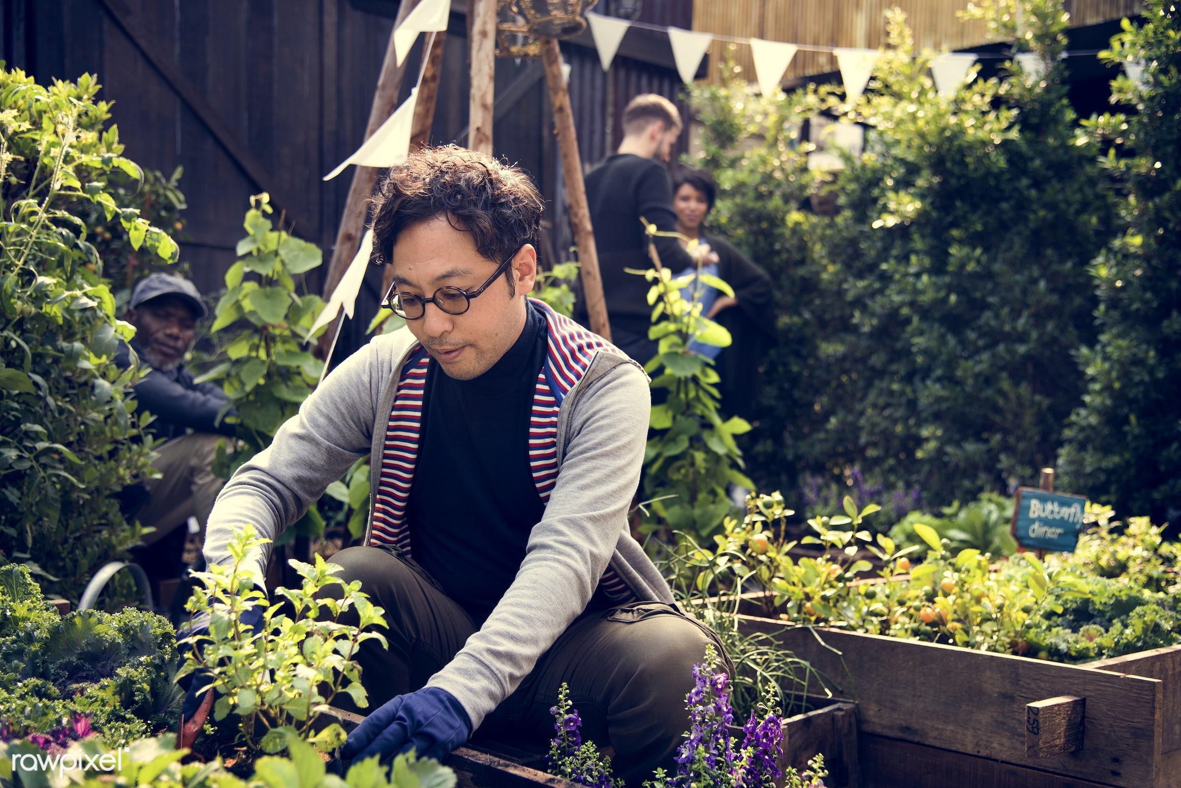 plant, countryside, person, botany, greenhouse, shrub, botanical, plantation, asian, tree, nature, lifestyle, worker, men,...