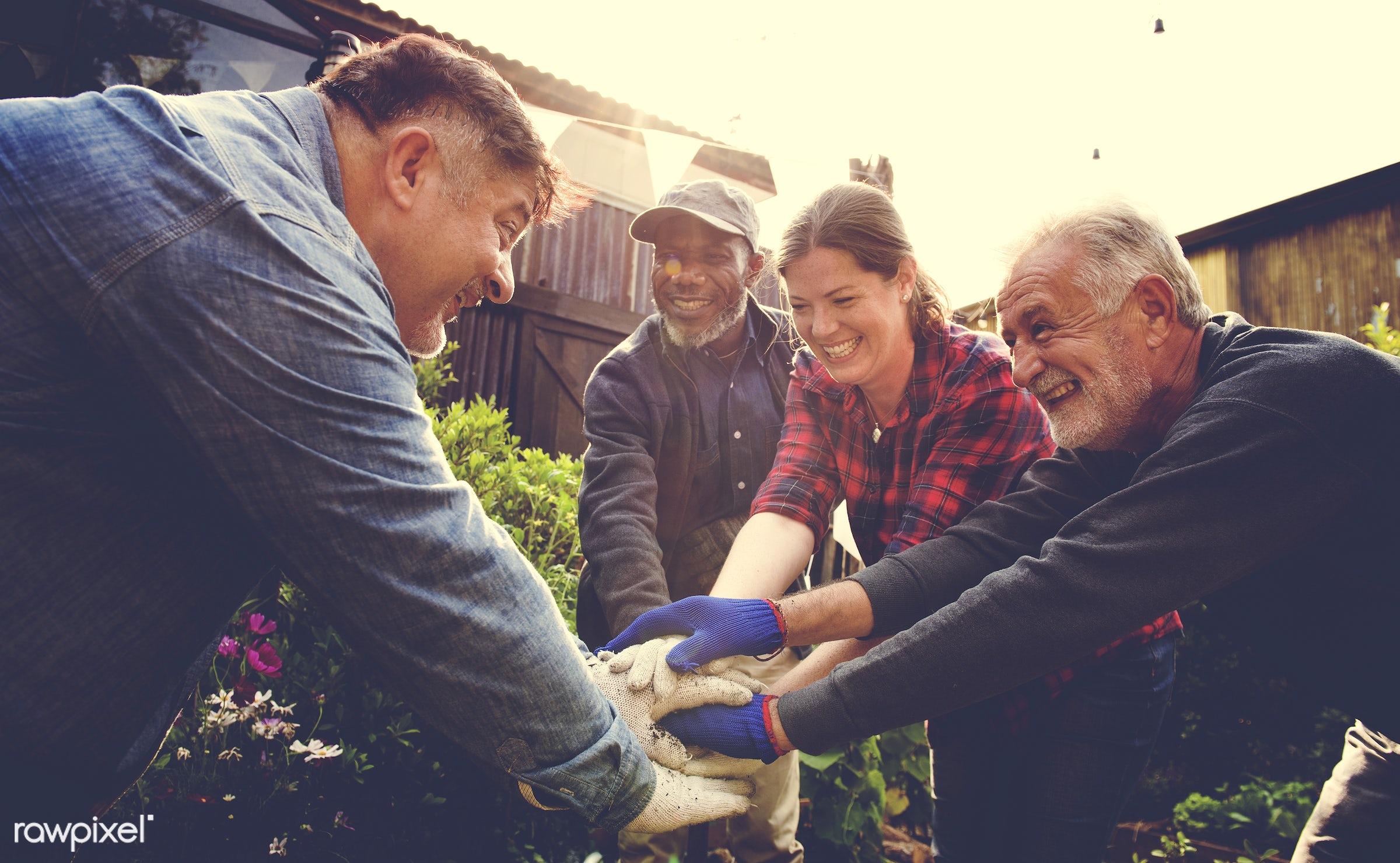 plant, nutritious, friends, farmer, fresh, lettuce, healthy eating, friendship, men, flower, diversity, support, green,...