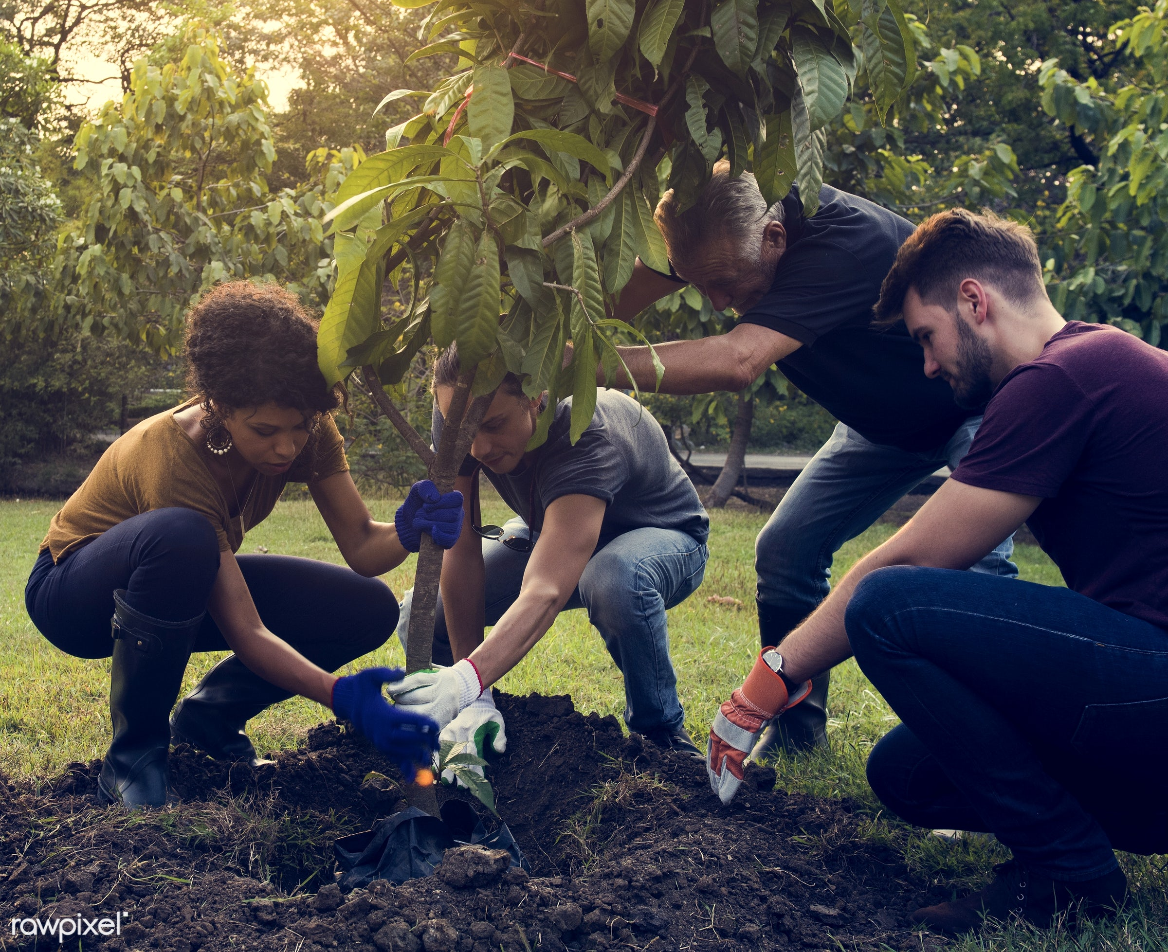 person, save, community service, people, together, help, tree, nature, woman, friendship, dirt, responsibility, support,...