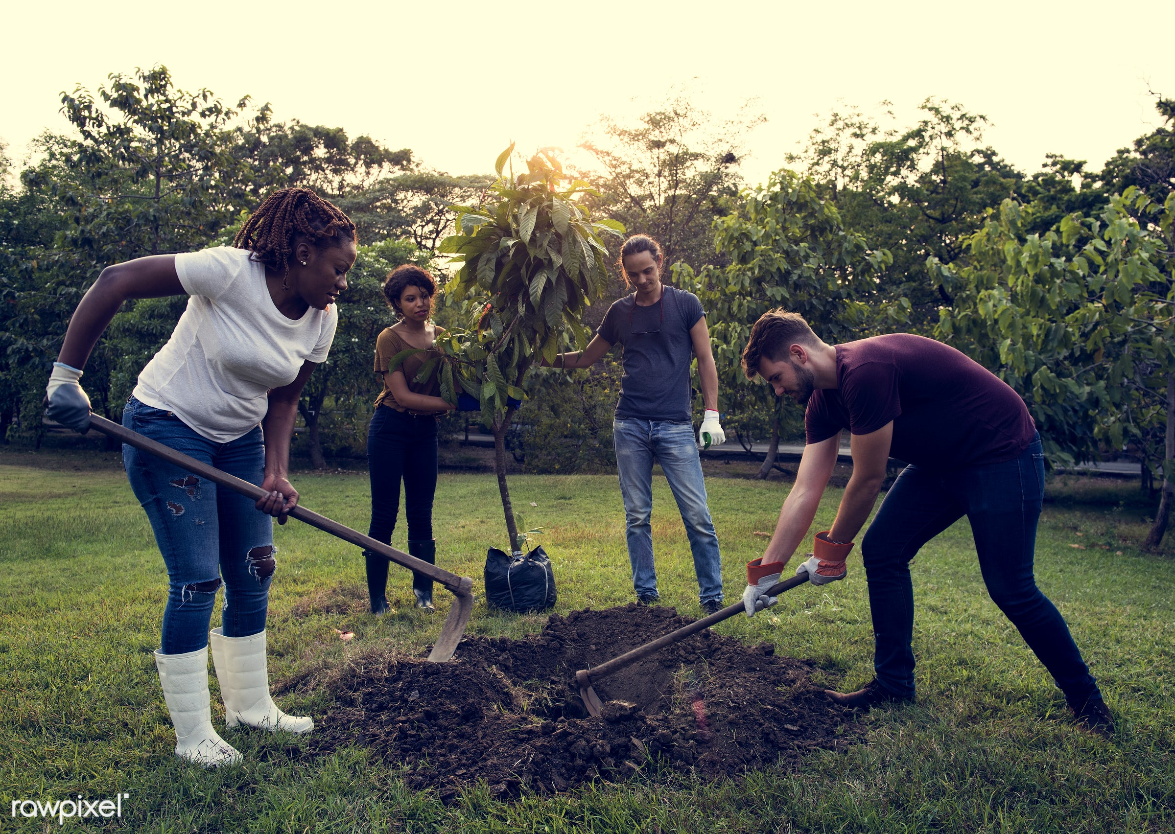 person, save, community service, people, together, help, tree, nature, woman, friendship, responsibility, support, global,...
