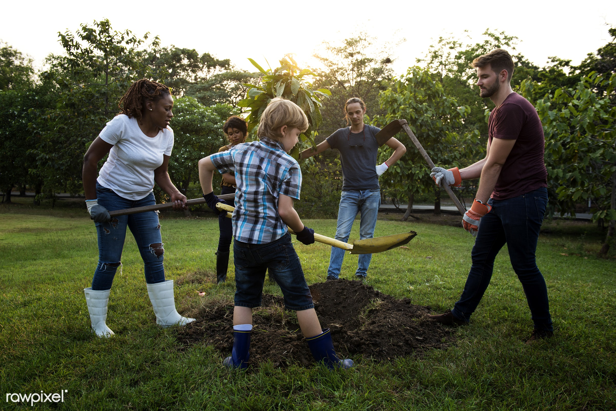 person, save, community service, leaves, people, together, kid, help, tree, nature, woman, friendship, responsibility,...
