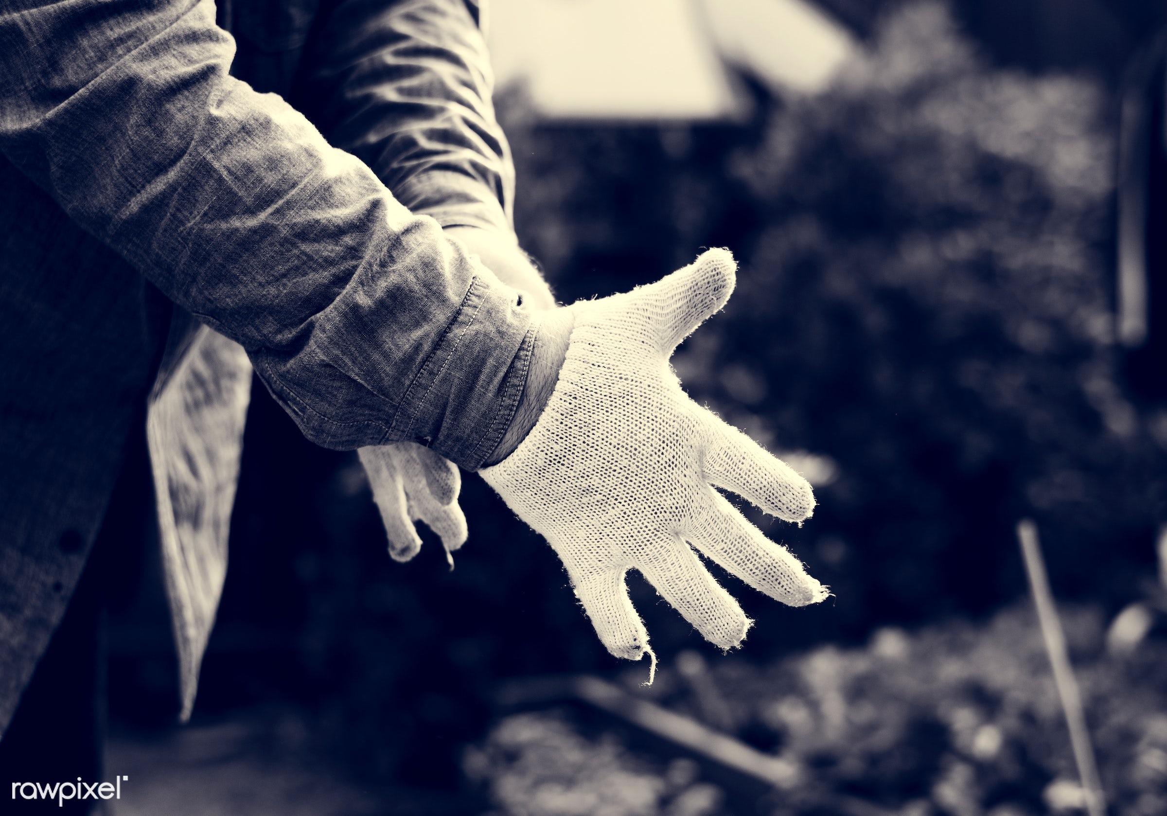plant, person, holding, botany, ground, botanical, spring, plantation, hand, farm, nature, farmer, care, cultivation, dirt,...