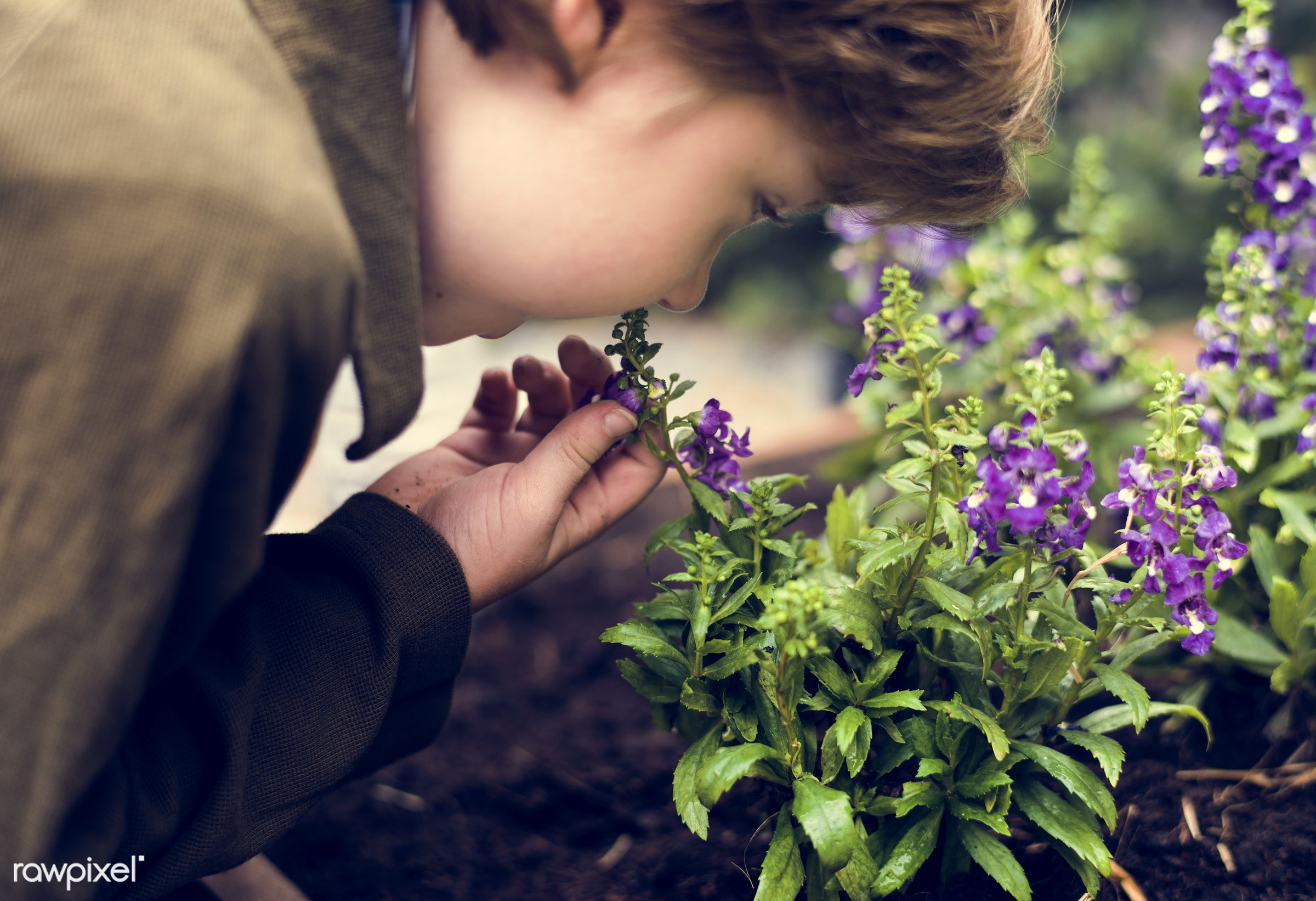 plant, bright, ground, children, spring, blossom, kid, child, nature, fresh, backyard, flower, blooming, flora, green,...