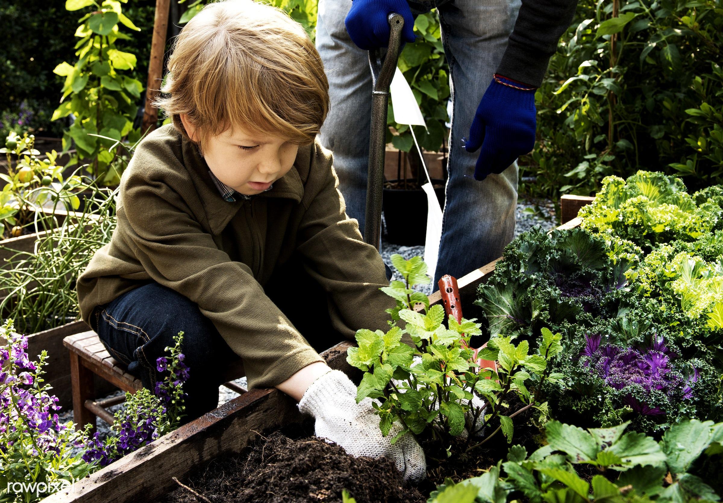 countryside, diverse, greenhouse, botanical, people, plantation, kid, teamwork, friends, tree, nature, lifestyle, friendship...