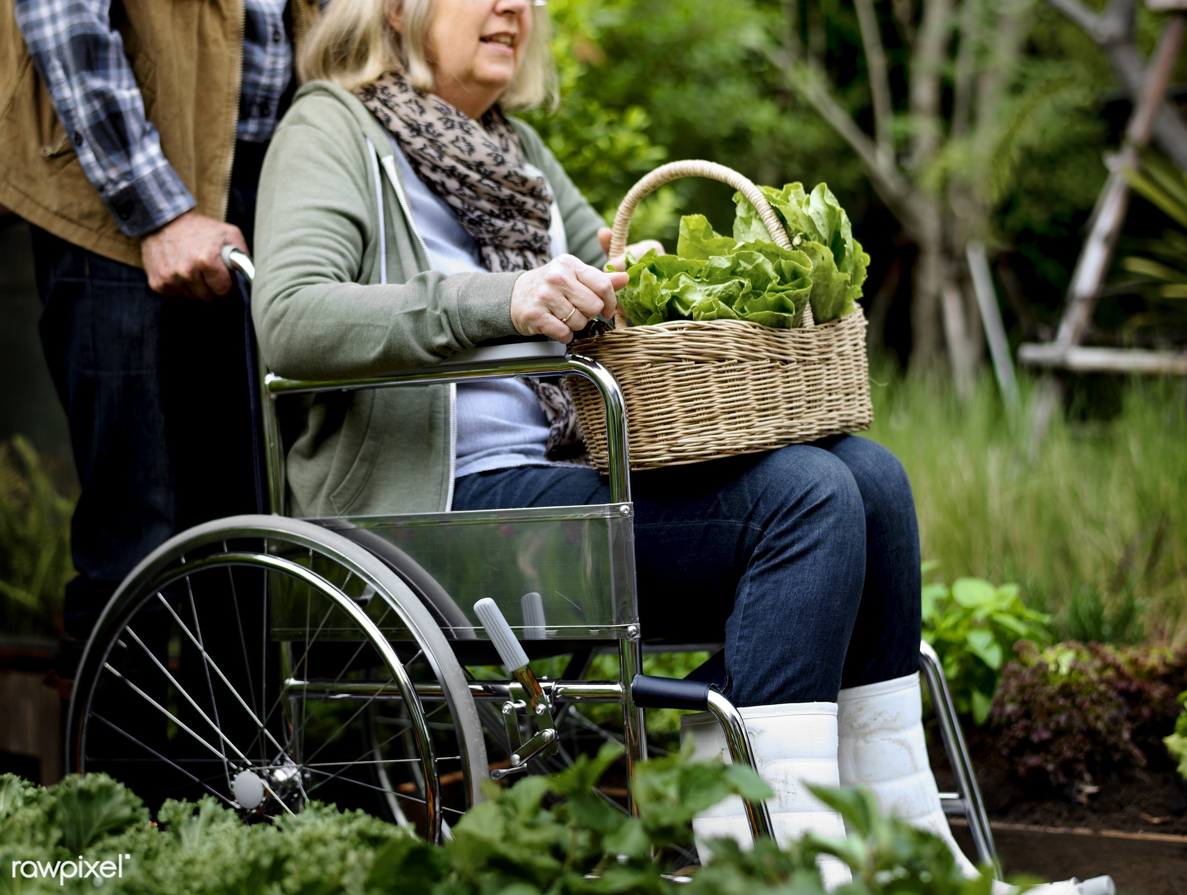 countryside, person, relax, greenhouse, botanical, plantation, together, caucasian, love, retirement, cripple, tree, farmer...