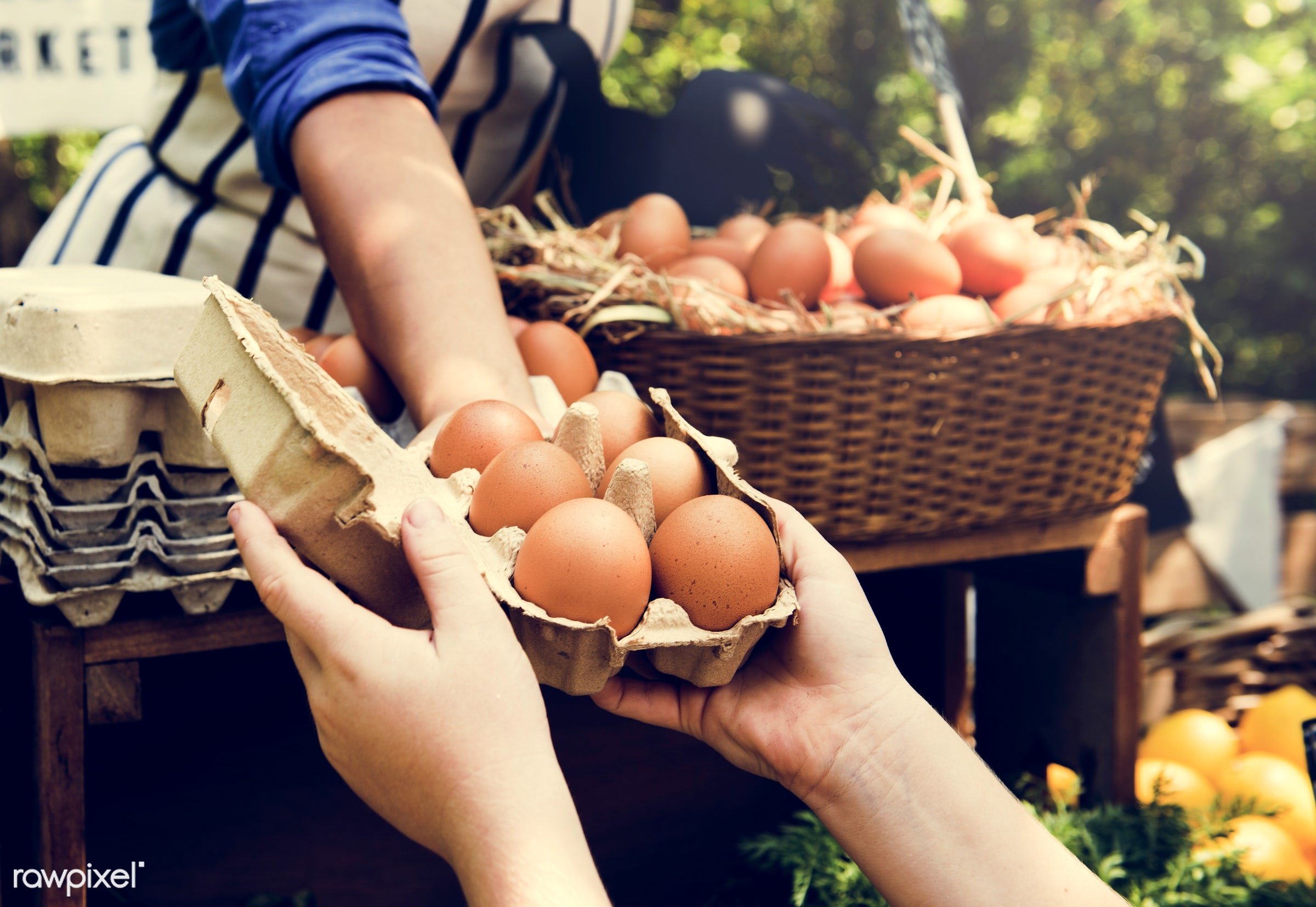 shop, uncooked, cuisine, poultry, round, rooster, house, homemade, farmer, woman, protein, ingredient, oval, agriculturalist...