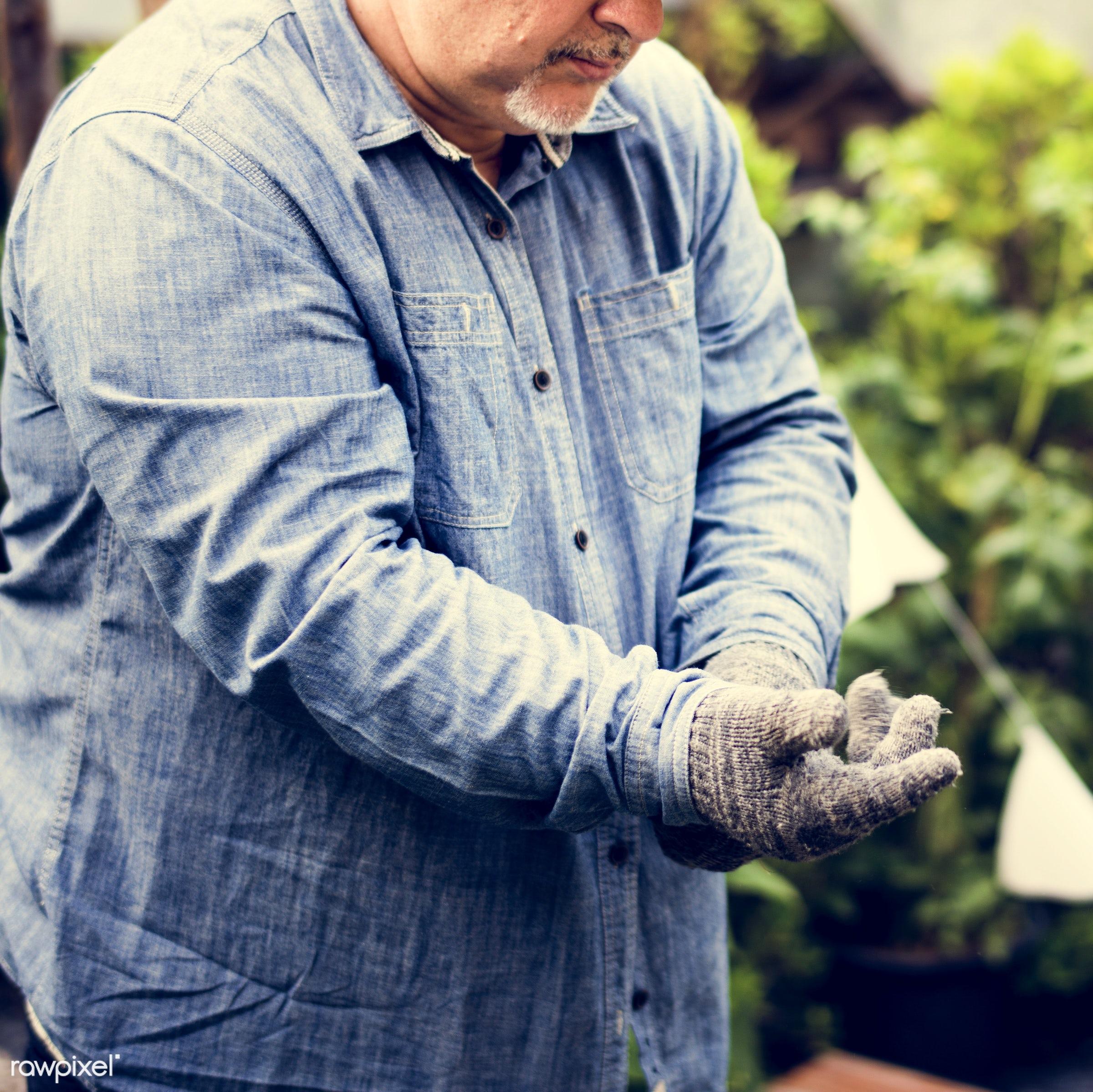 plant, holding, ground, plantation, spring, farm, hand, farmland, farmer, green, agriculture, planting, gloves, growing,...