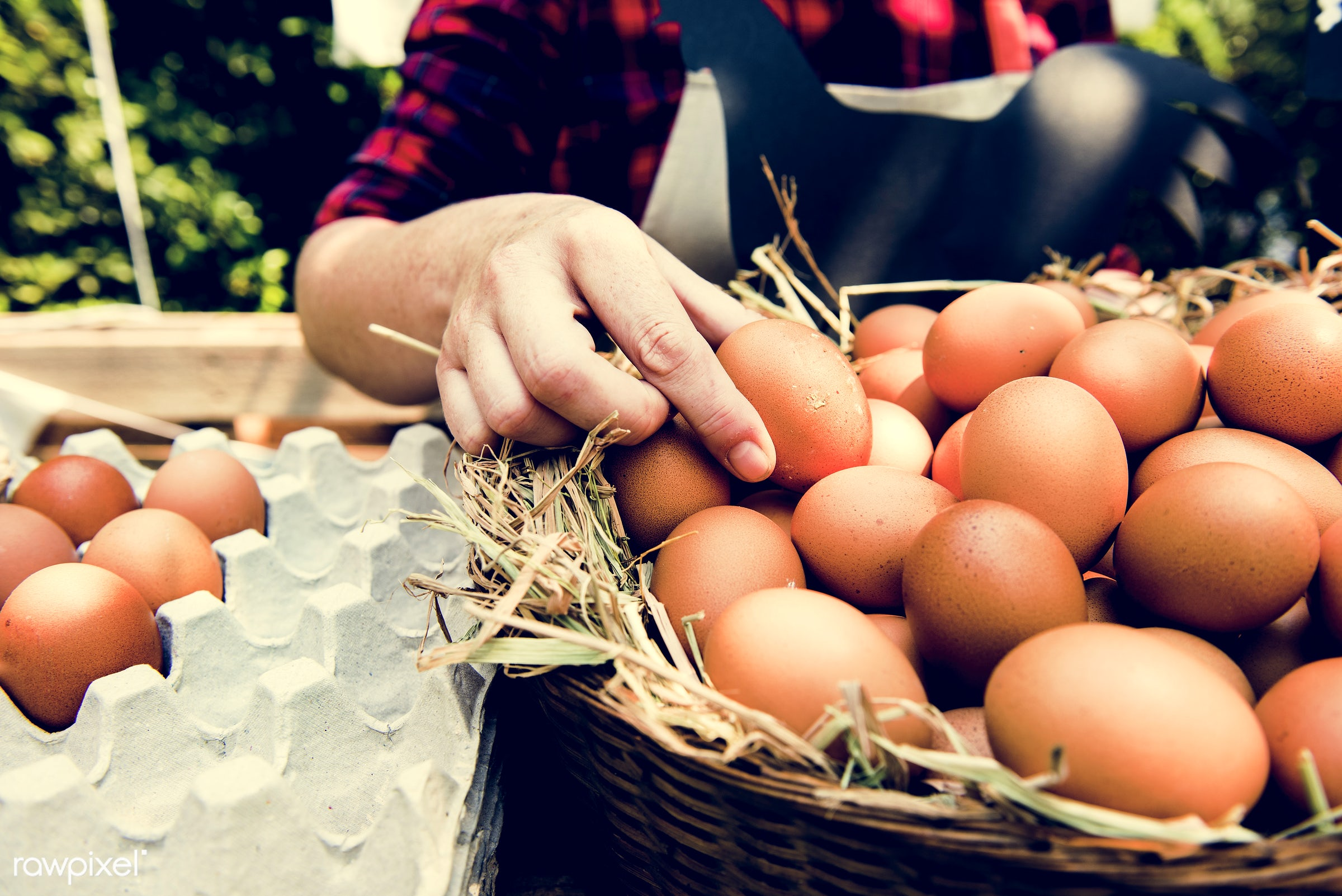 shop, uncooked, cuisine, poultry, round, rooster, house, homemade, farmer, woman, protein, ingredient, oval, selling,...