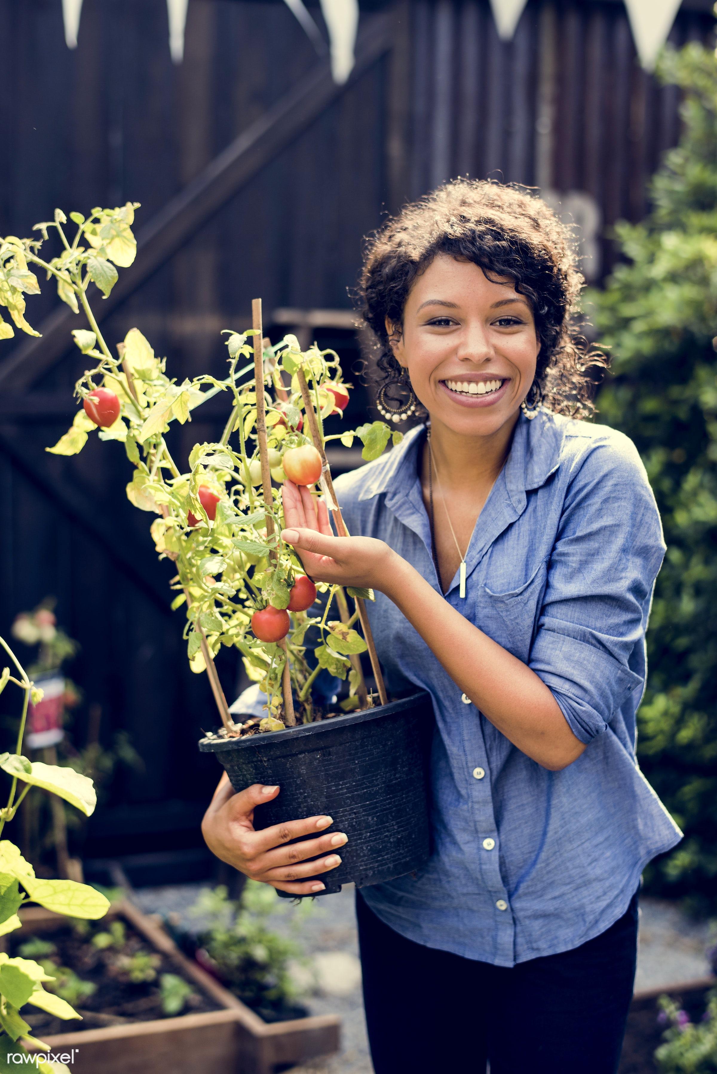 plant, countryside, person, botany, greenhouse, shrub, botanical, plantation, caucasian, tree, nature, farmer, woman,...
