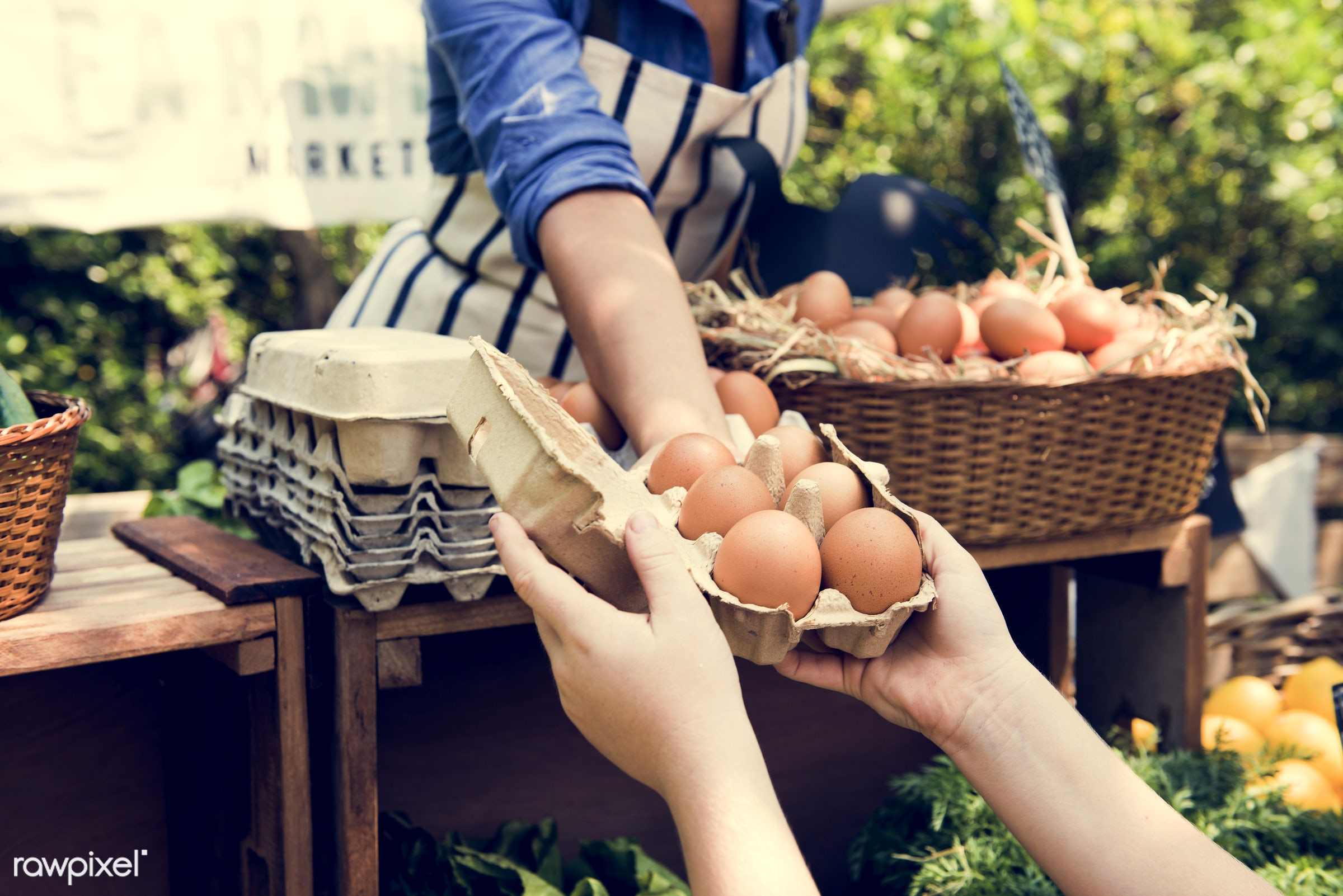 shop, uncooked, cuisine, poultry, round, rooster, house, homemade, farmer, protein, ingredient, oval, agriculturalist,...