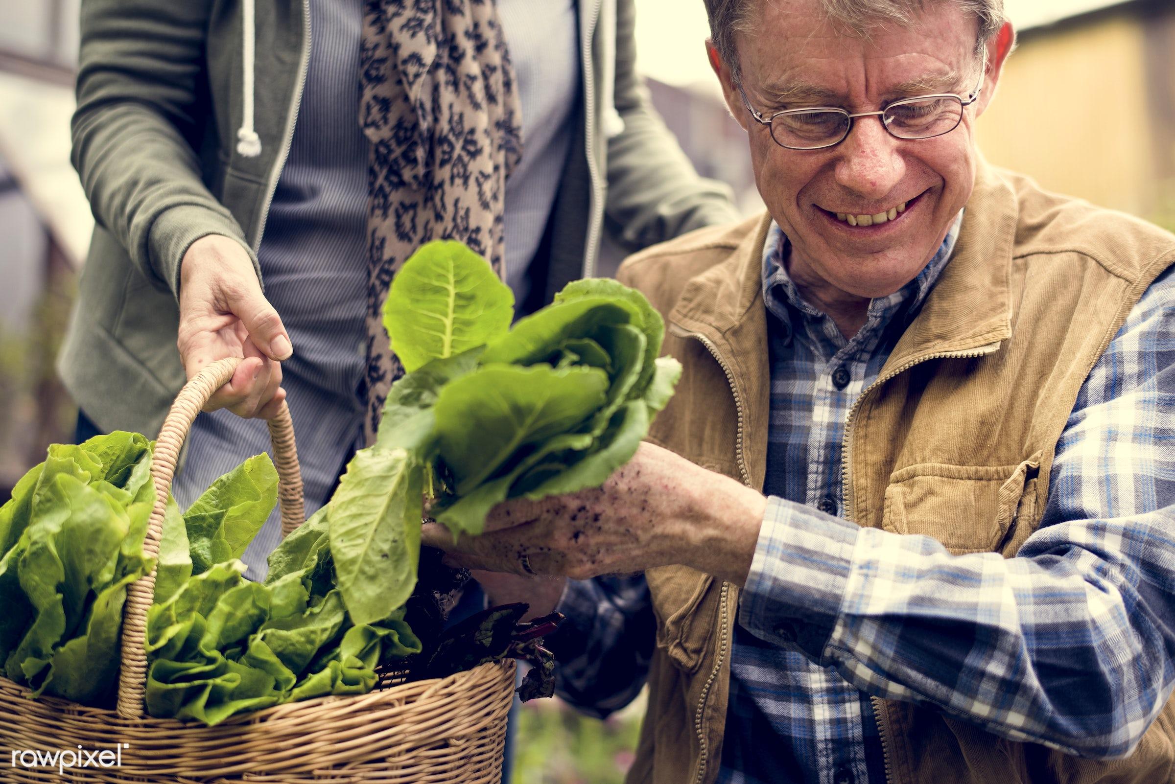 countryside, person, greenhouse, plantation, caucasian, retirement, tree, farmer, nature, woman, lifestyle, backyard,...