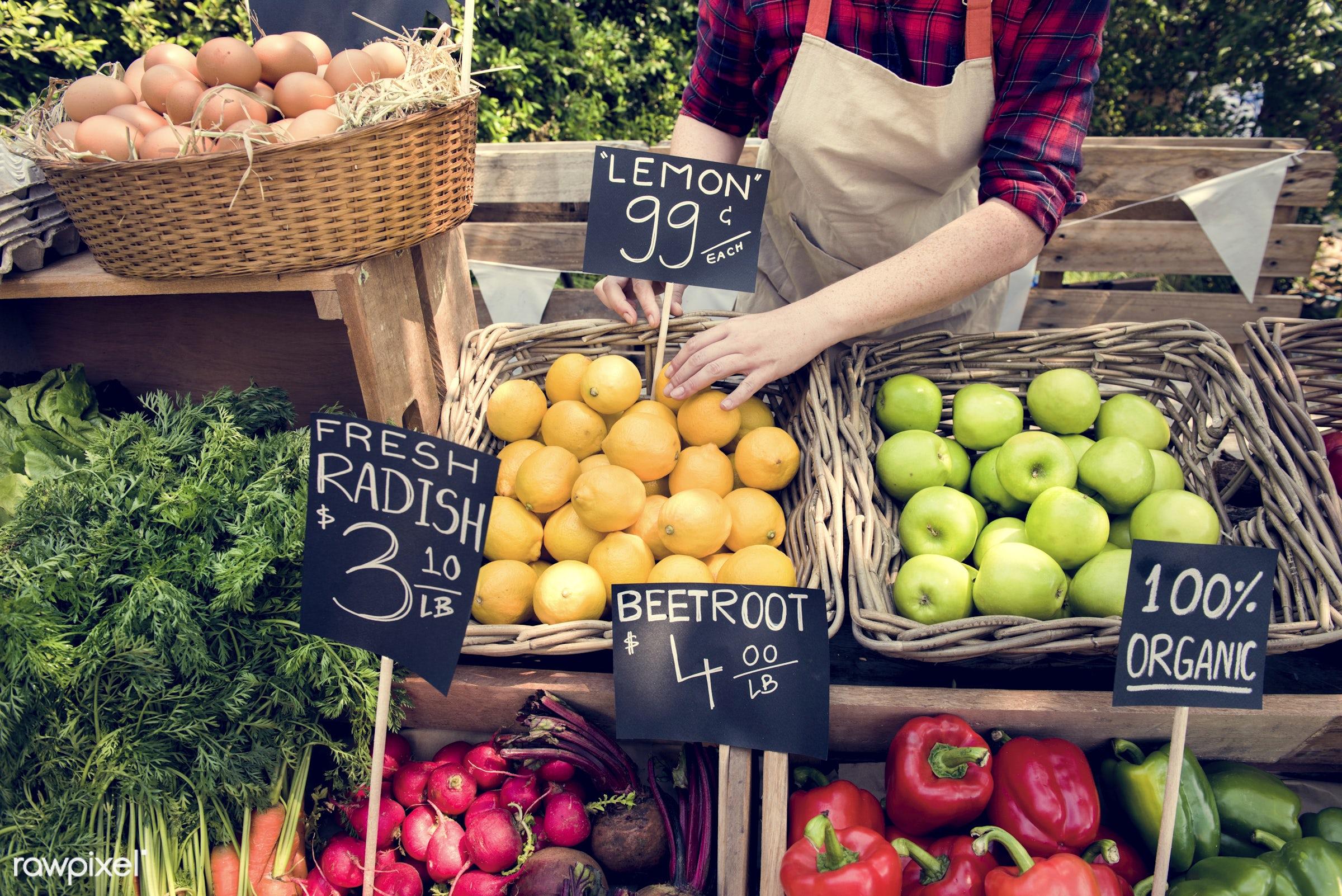 grocery, shop, nutritious, store, carrot, bell pepper, egg, farmer, fresh, healthy eating, marketplace, banner, fruit,...