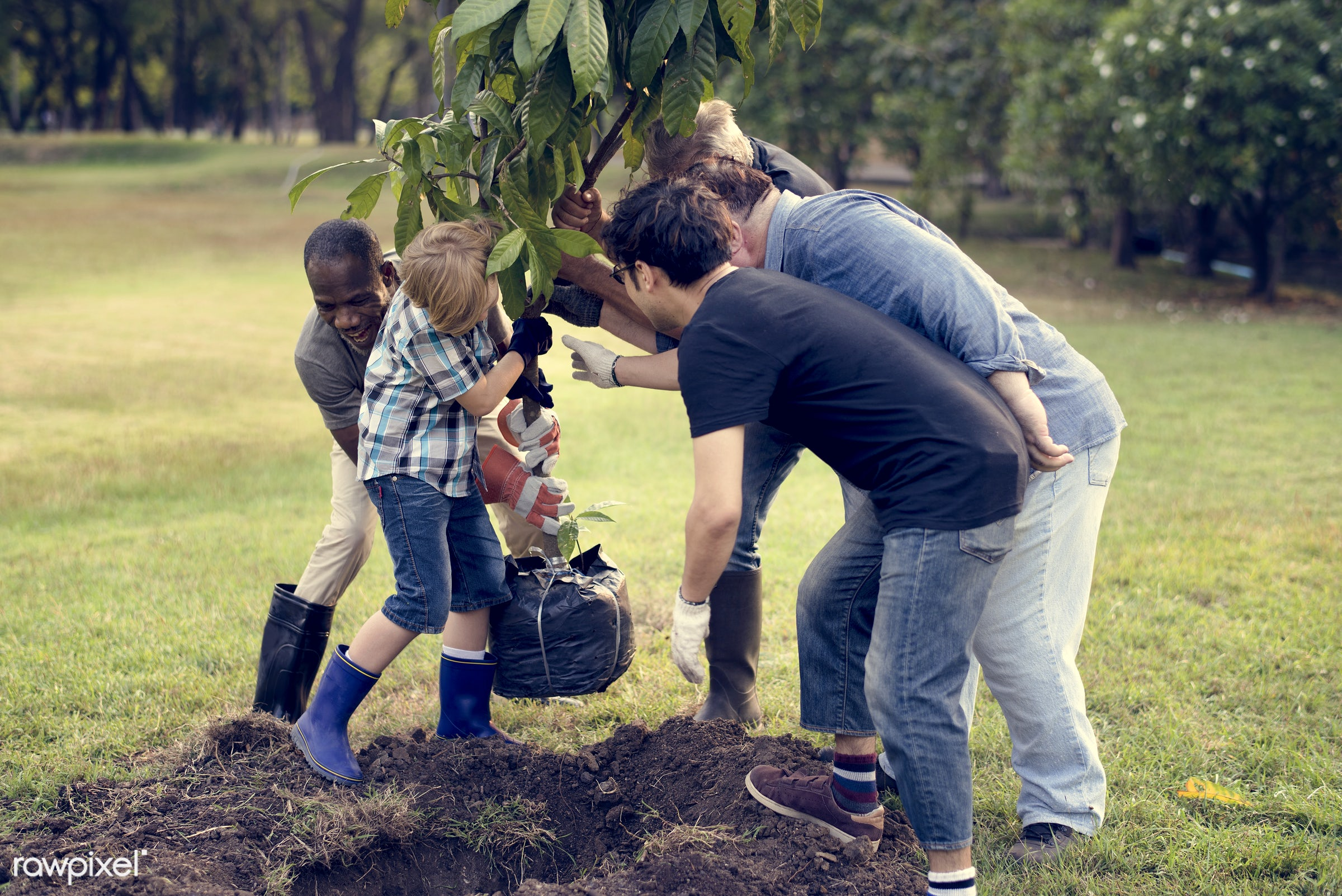 person, community service, leaves, people, together, kid, help, tree, nature, friendship, dirt, responsibility, support,...