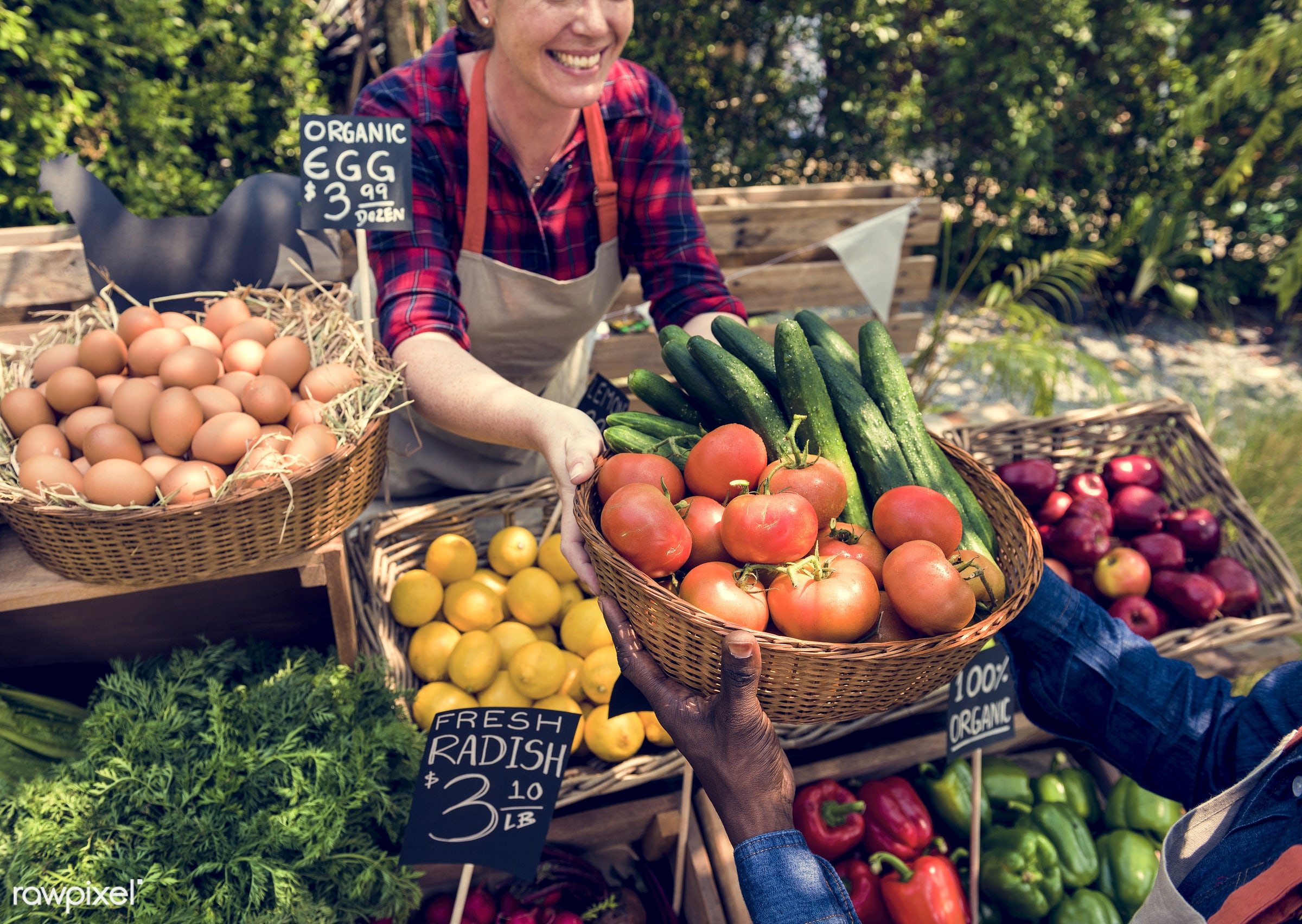 grocery, shop, store, tomato, nutritious, holding, bell pepper, egg, cucumber, farmer, fresh, healthy eating, marketplace,...