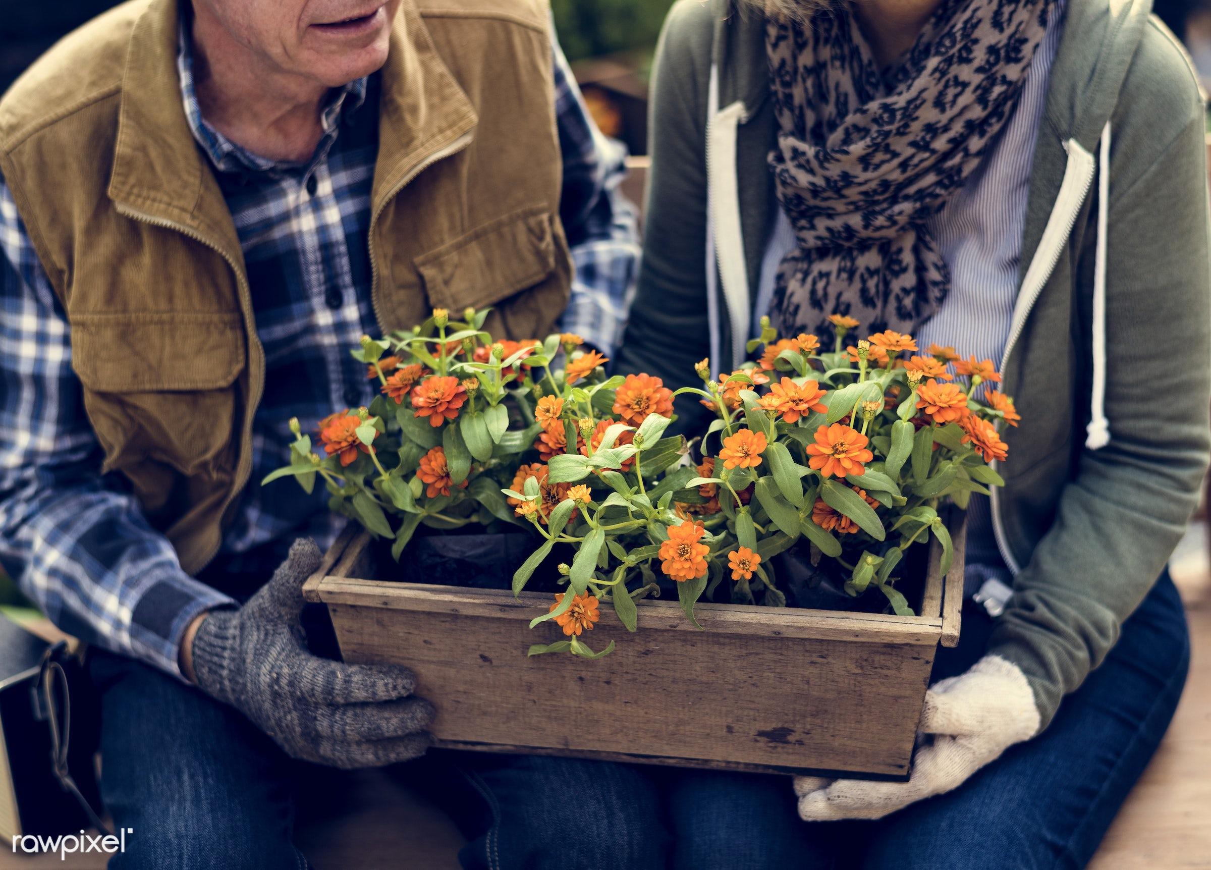countryside, person, greenhouse, botanical, plantation, caucasian, retirement, tree, farmer, nature, woman, lifestyle,...