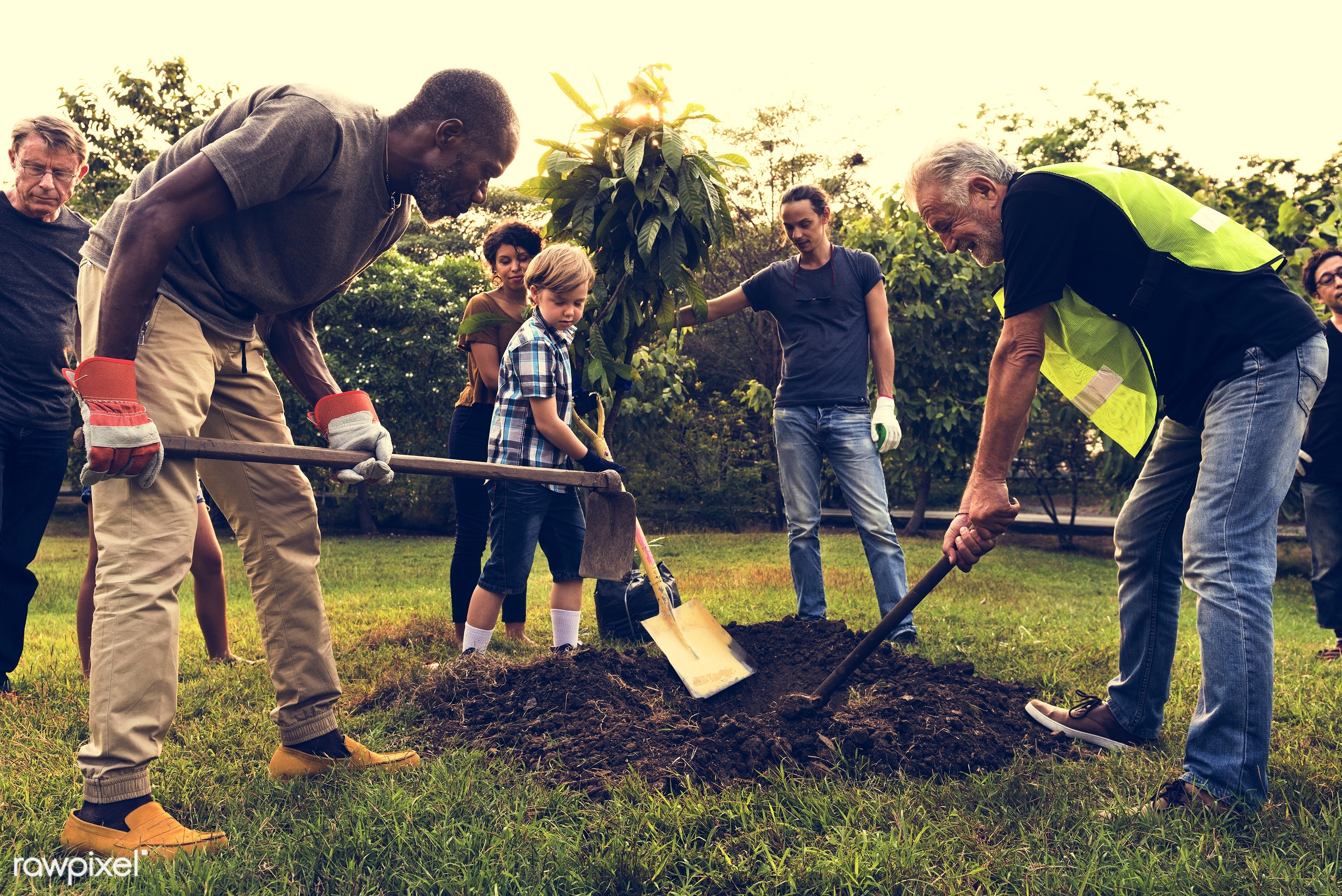 person, community service, plantation, people, together, kid, help, friends, nature, woman, lifestyle, friendship,...