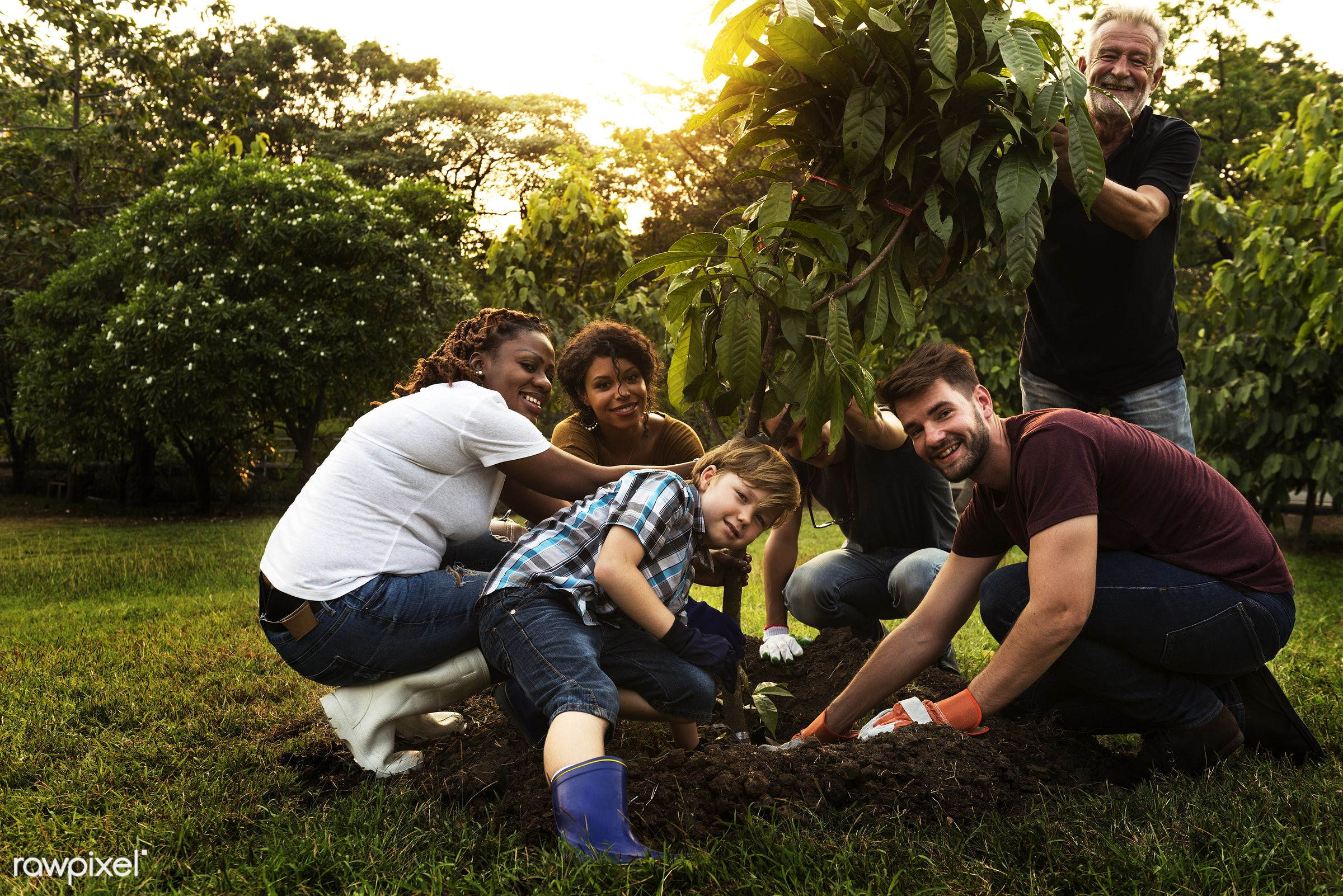 person, community service, leaves, people, together, kid, help, tree, nature, woman, friendship, dirt, responsibility,...