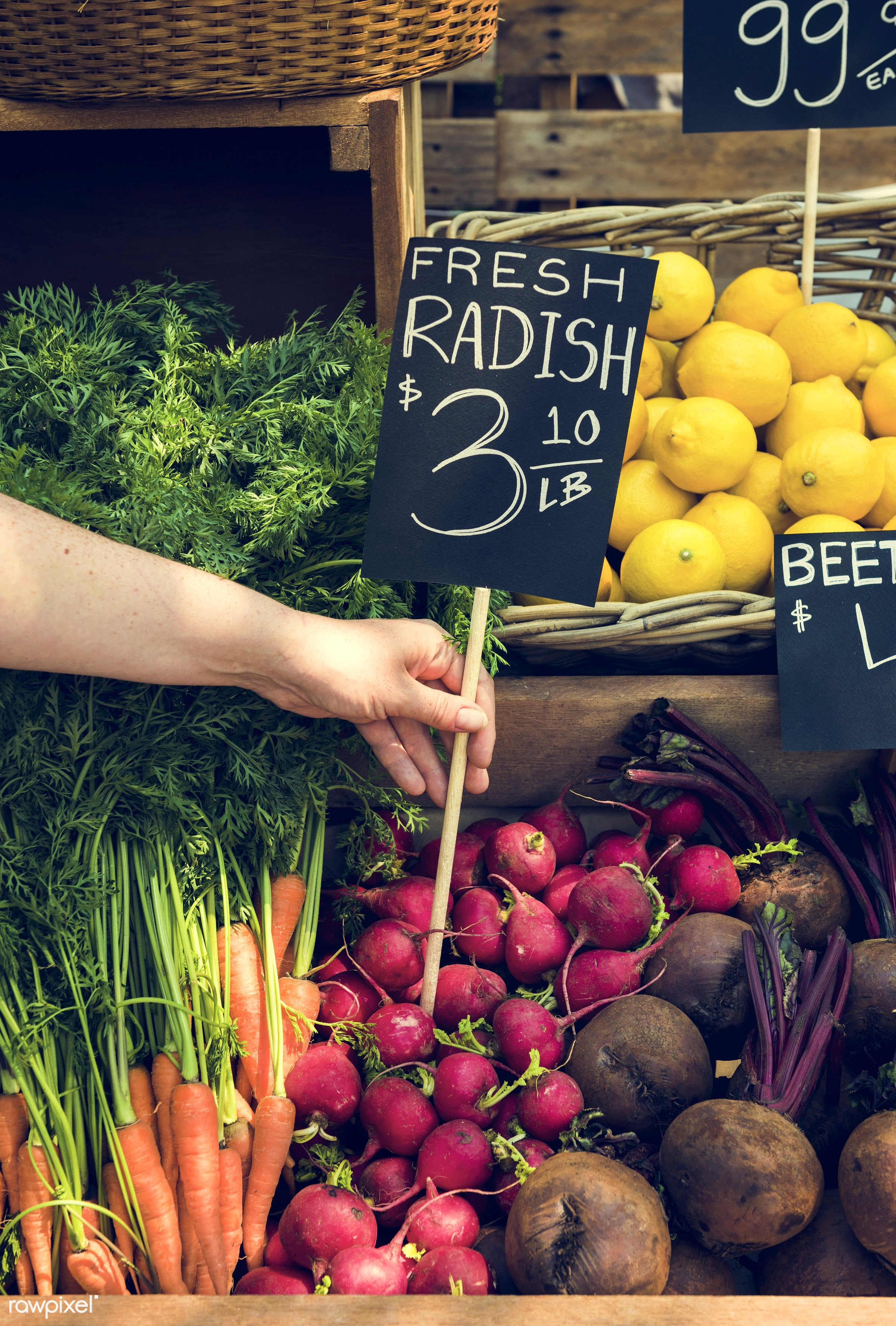 grocery, shop, carrot, nutritious, store, holding, hand, farmer, fresh, healthy eating, marketplace, banner, fruit,...