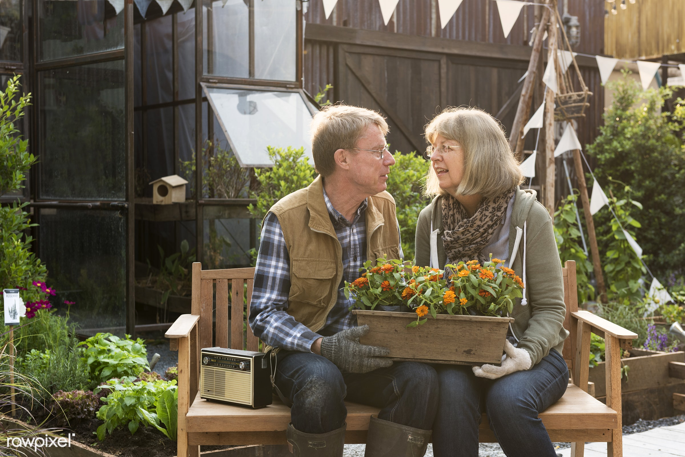 countryside, person, greenhouse, relax, botanical, plantation, together, caucasian, retirement, farmer, nature, tree, woman...